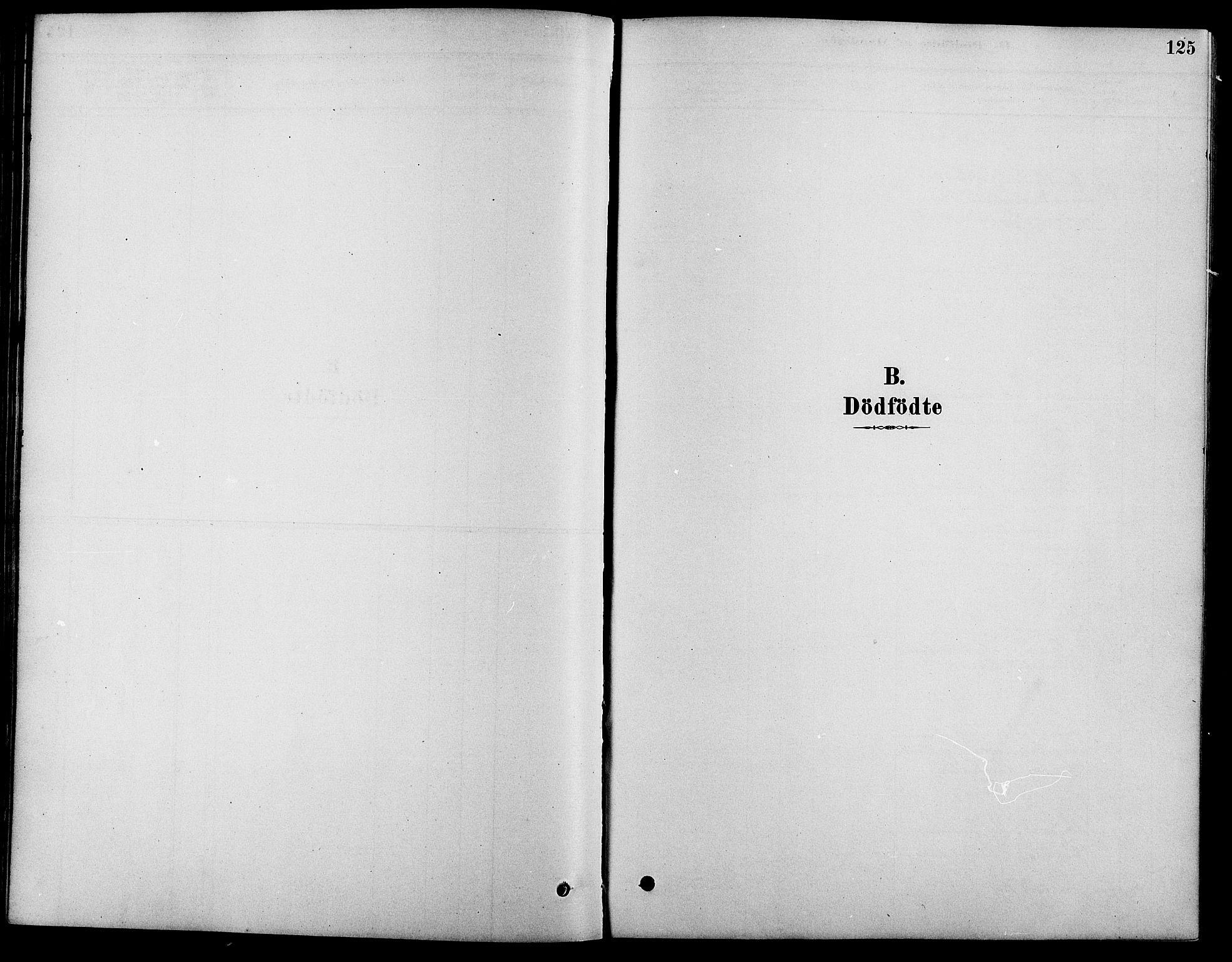 SAH, Fåberg prestekontor, Ministerialbok nr. 8, 1879-1898, s. 125
