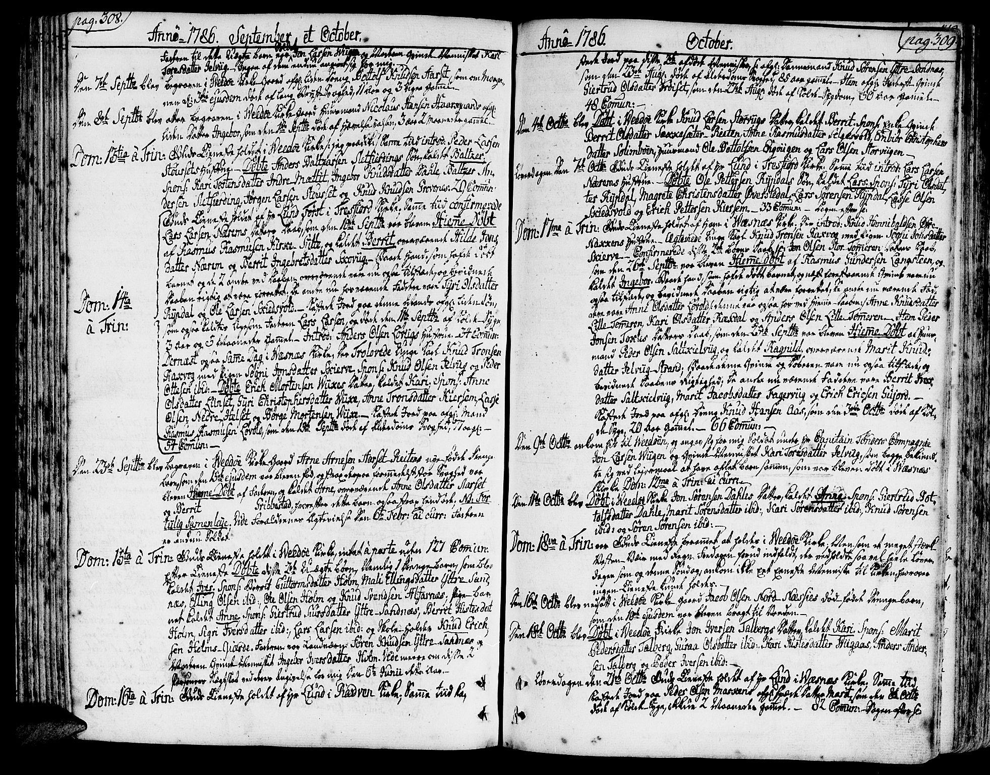 SAT, Ministerialprotokoller, klokkerbøker og fødselsregistre - Møre og Romsdal, 547/L0600: Ministerialbok nr. 547A02, 1765-1799, s. 308-309