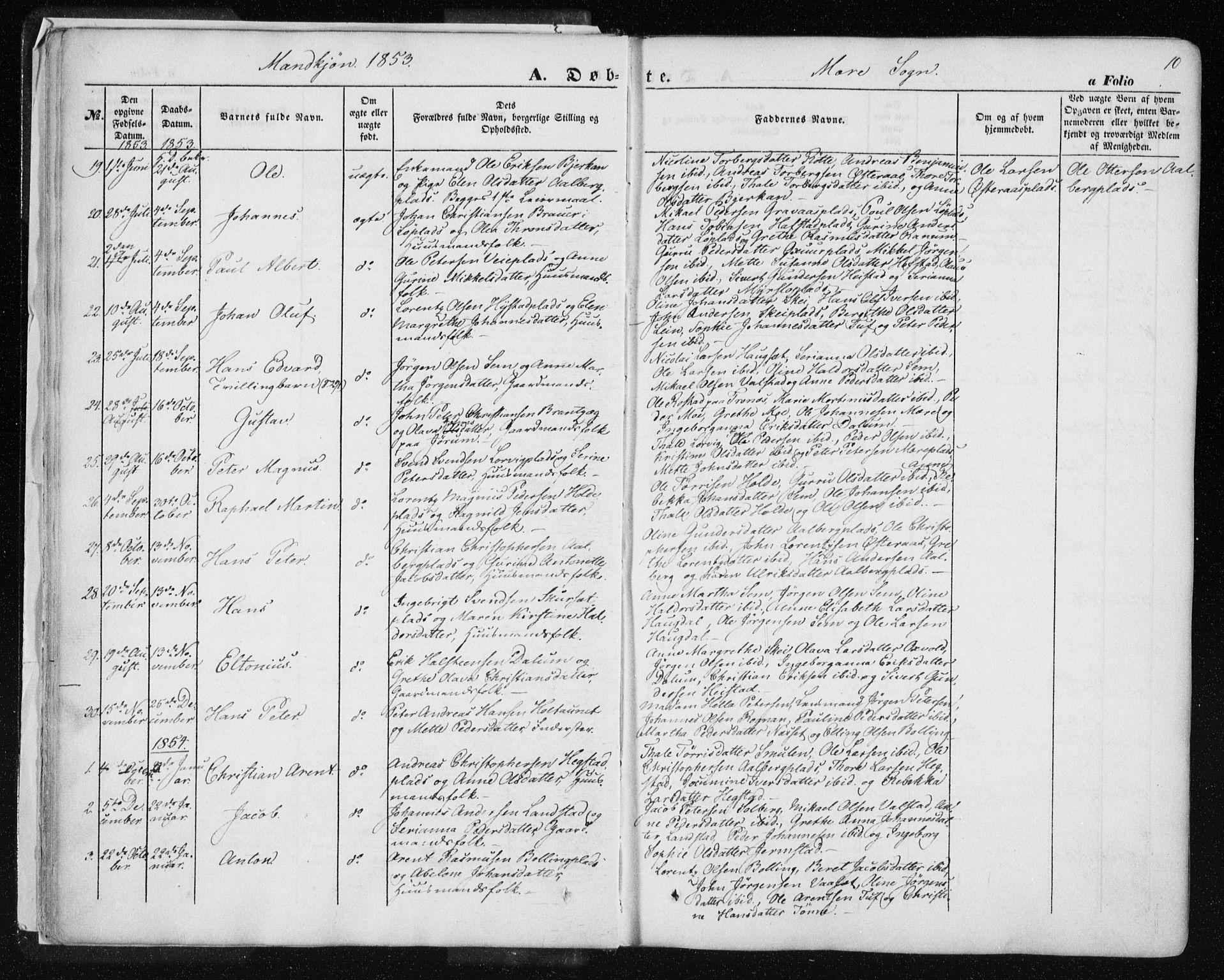 SAT, Ministerialprotokoller, klokkerbøker og fødselsregistre - Nord-Trøndelag, 735/L0342: Ministerialbok nr. 735A07 /1, 1849-1862, s. 10