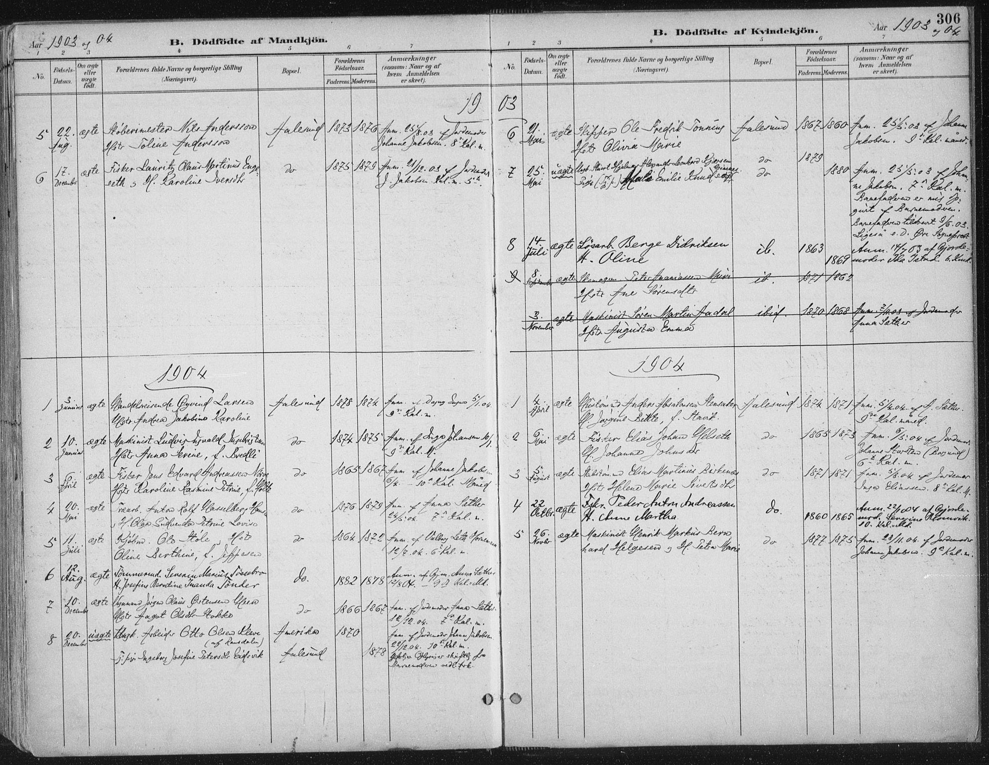 SAT, Ministerialprotokoller, klokkerbøker og fødselsregistre - Møre og Romsdal, 529/L0456: Ministerialbok nr. 529A06, 1894-1906, s. 306