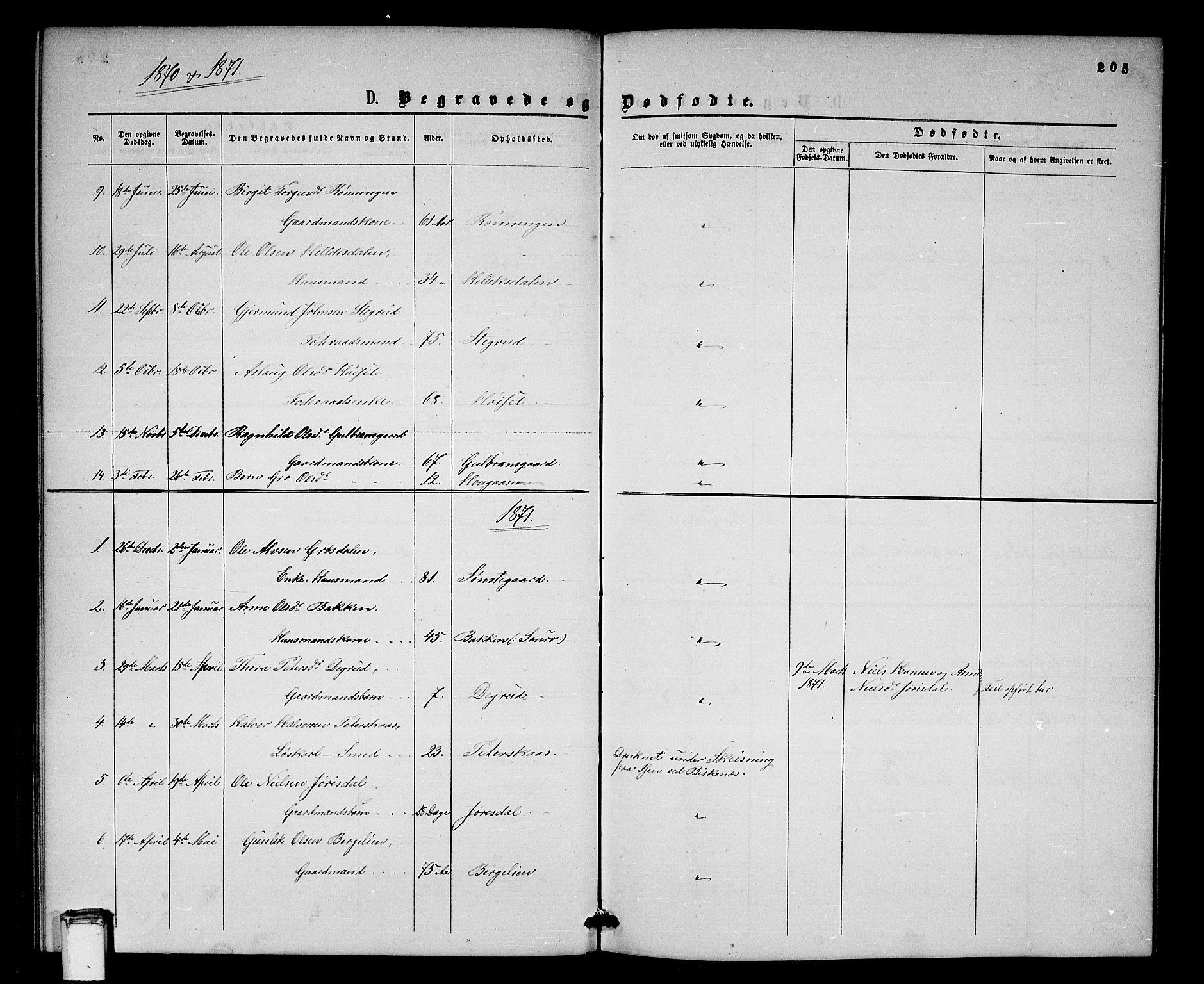 SAKO, Gransherad kirkebøker, G/Gb/L0002: Klokkerbok nr. II 2, 1860-1886, s. 205