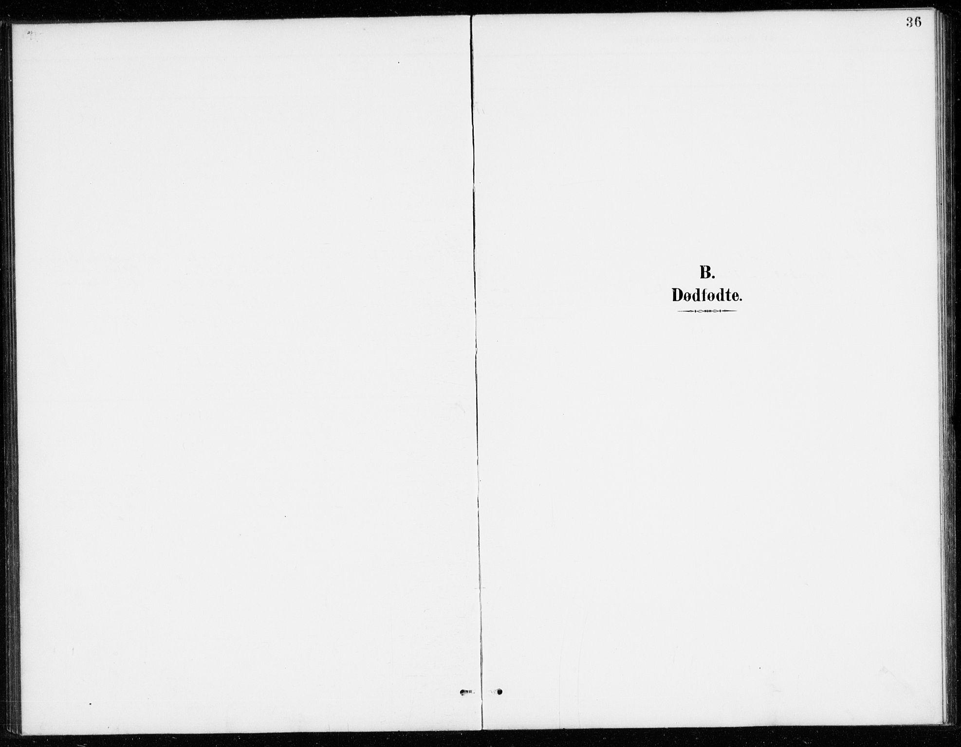 SAKO, Vinje kirkebøker, G/Gb/L0003: Klokkerbok nr. II 3, 1892-1943, s. 36