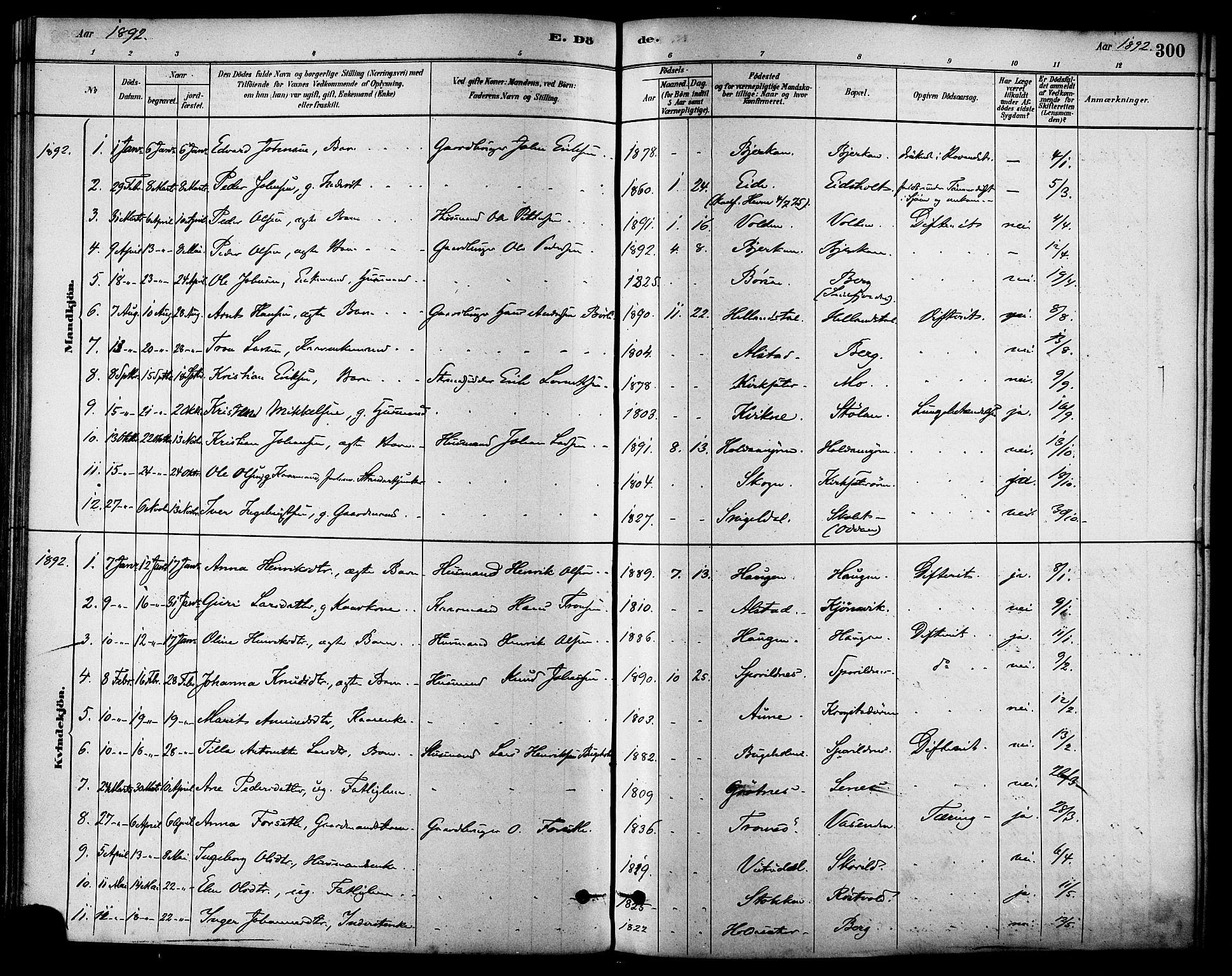SAT, Ministerialprotokoller, klokkerbøker og fødselsregistre - Sør-Trøndelag, 630/L0496: Ministerialbok nr. 630A09, 1879-1895, s. 300