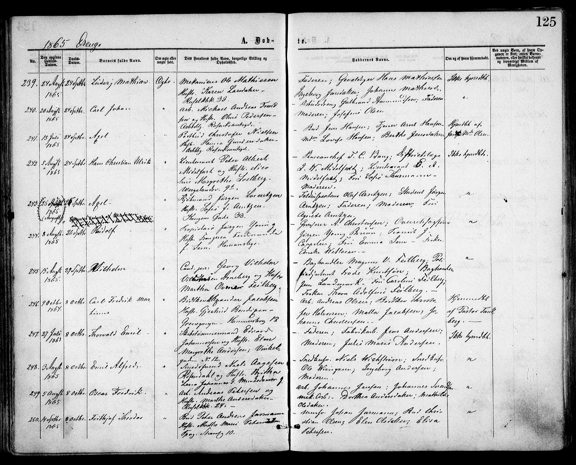 SAO, Trefoldighet prestekontor Kirkebøker, F/Fa/L0002: Ministerialbok nr. I 2, 1863-1870, s. 125