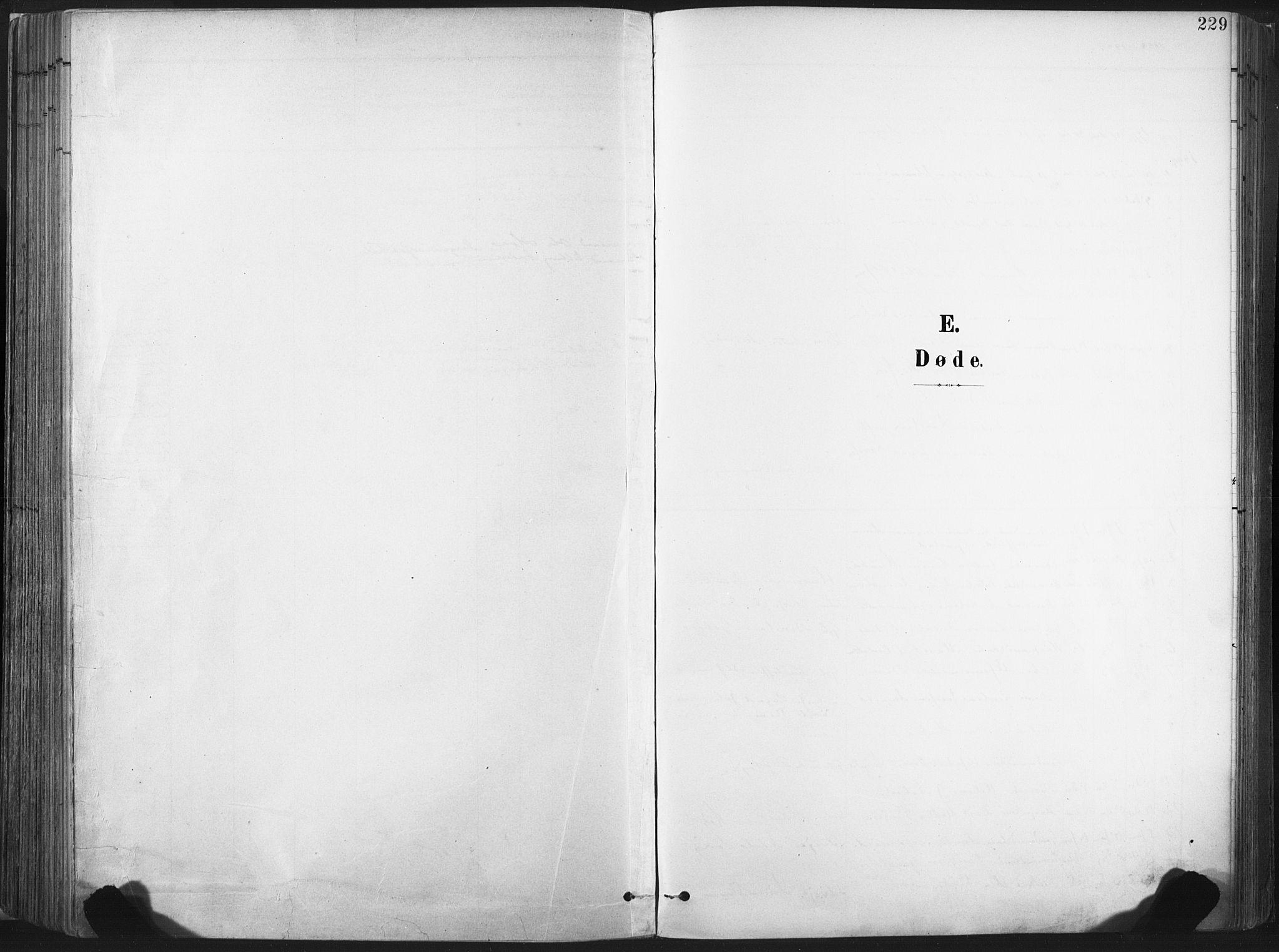 SAT, Ministerialprotokoller, klokkerbøker og fødselsregistre - Nord-Trøndelag, 717/L0162: Ministerialbok nr. 717A12, 1898-1923, s. 229