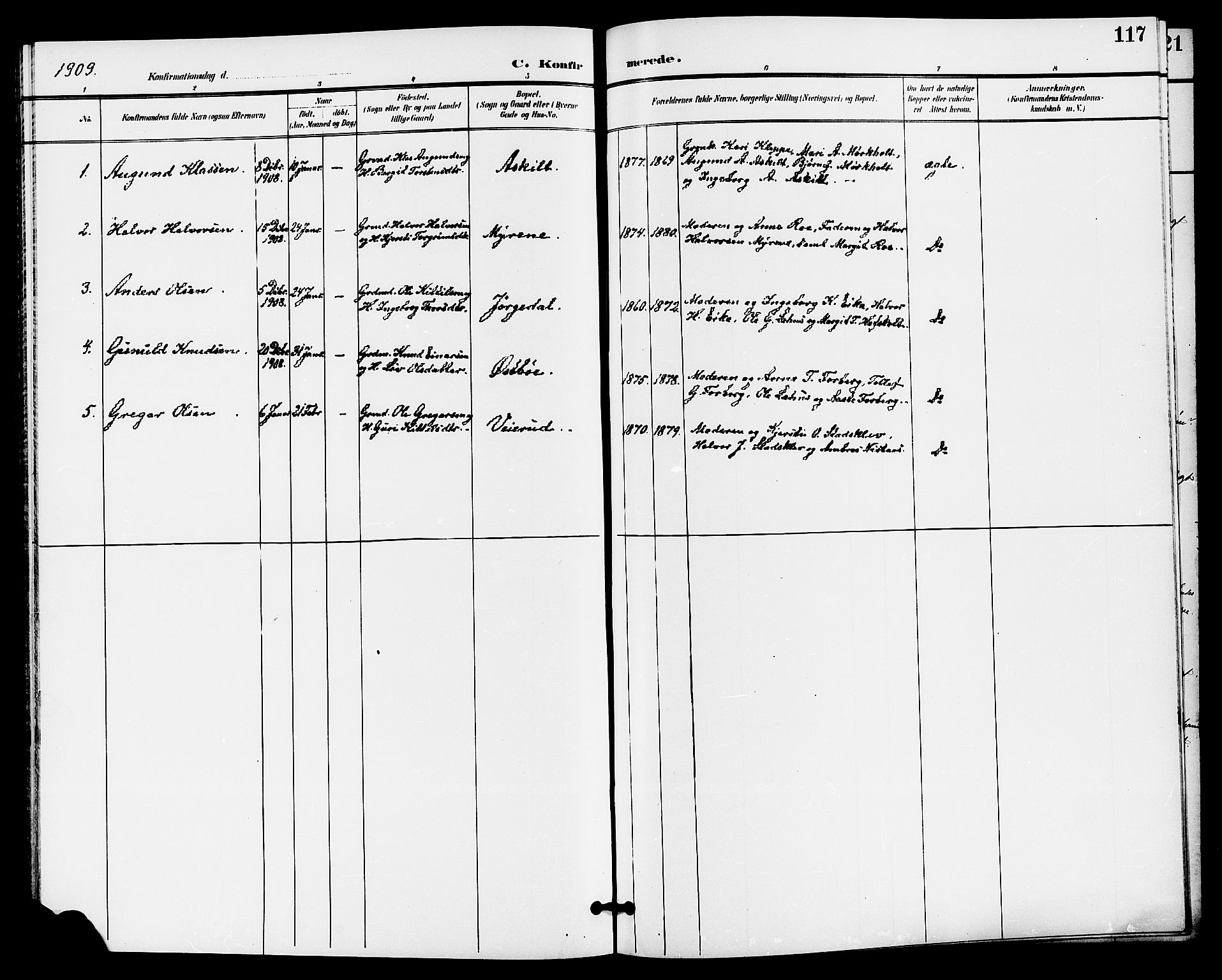 SAKO, Bø kirkebøker, G/Ga/L0006: Klokkerbok nr. 6, 1898-1909, s. 117