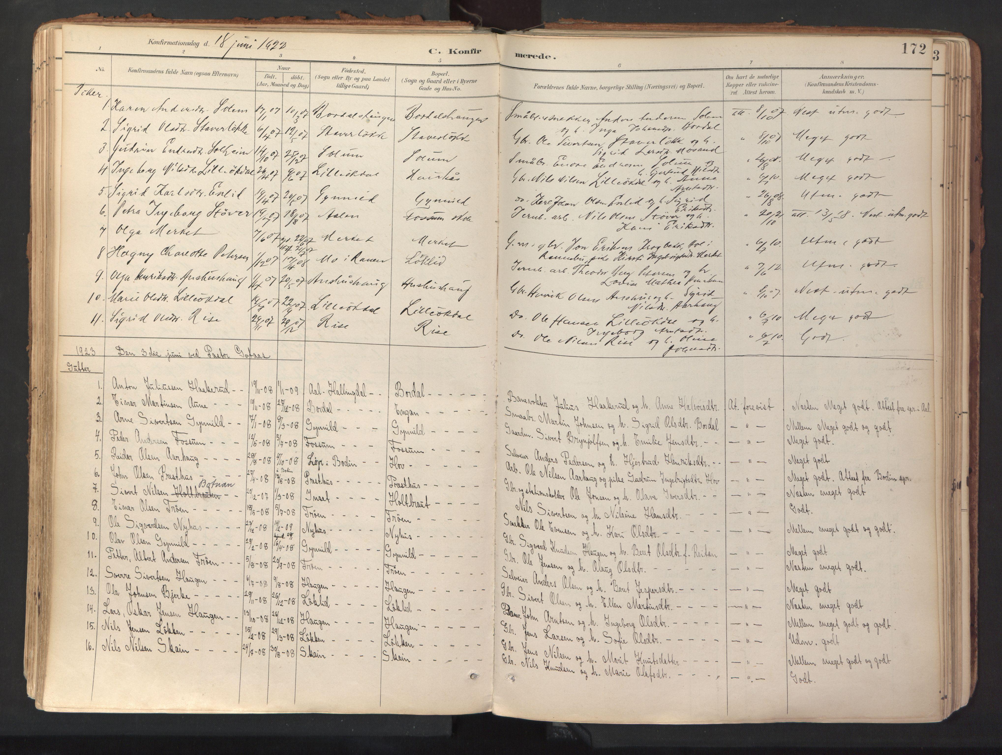 SAT, Ministerialprotokoller, klokkerbøker og fødselsregistre - Sør-Trøndelag, 689/L1041: Ministerialbok nr. 689A06, 1891-1923, s. 172