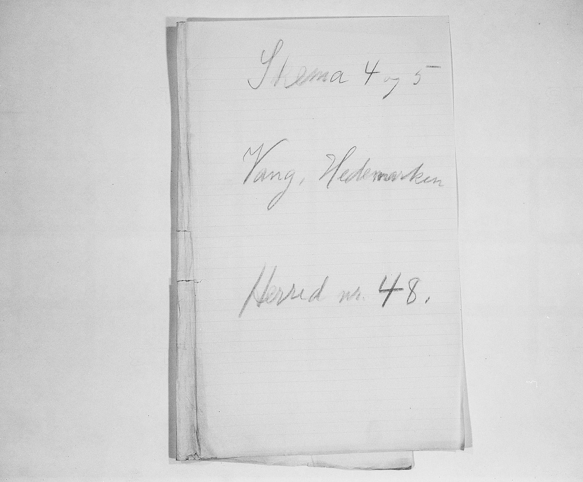 SAH, Folketelling 1900 for 0414 Vang herred, 1900, s. 1
