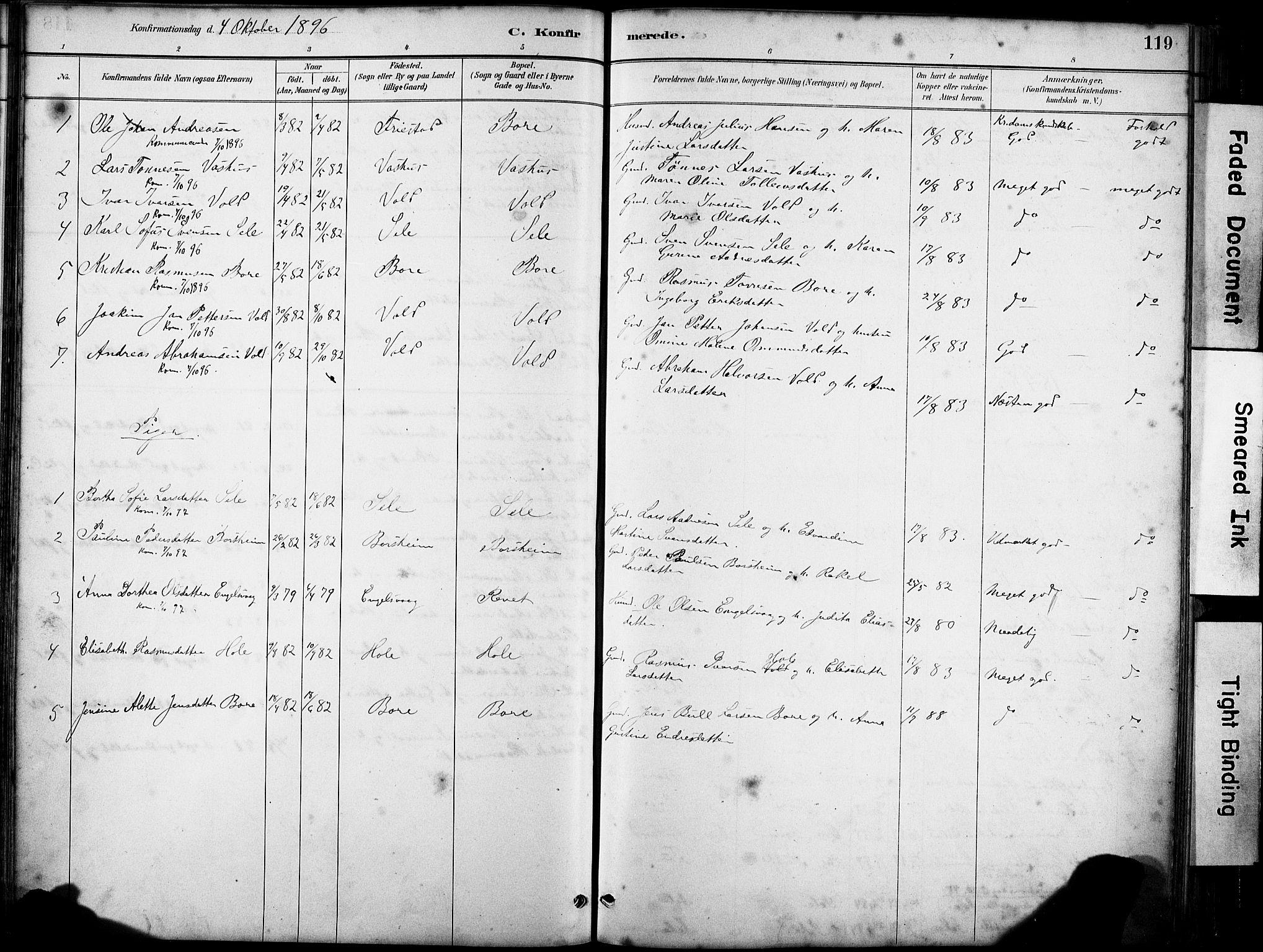 SAST, Klepp sokneprestkontor, 30BA/L0008: Ministerialbok nr. A 9, 1886-1919, s. 119
