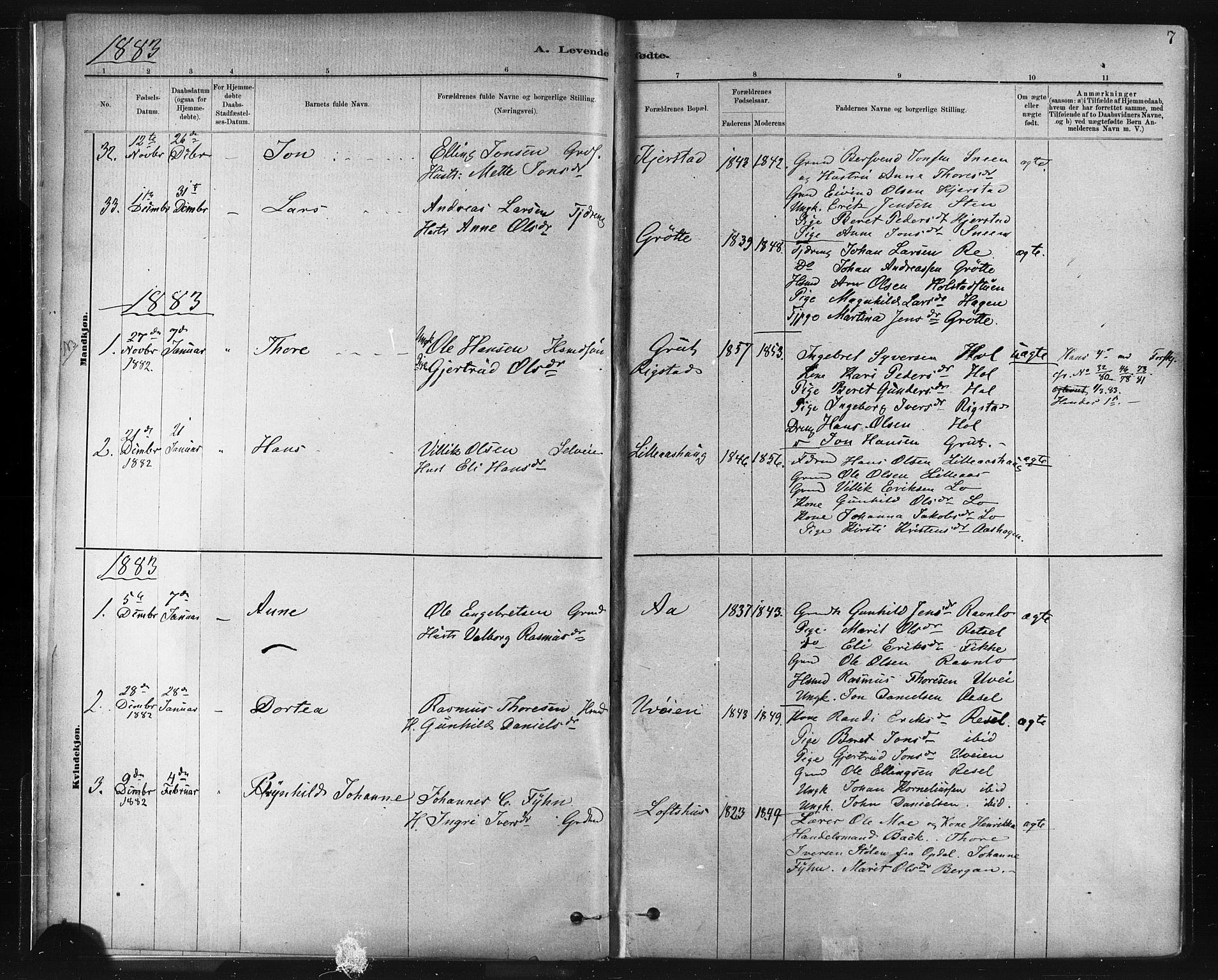 SAT, Ministerialprotokoller, klokkerbøker og fødselsregistre - Sør-Trøndelag, 672/L0857: Ministerialbok nr. 672A09, 1882-1893, s. 7