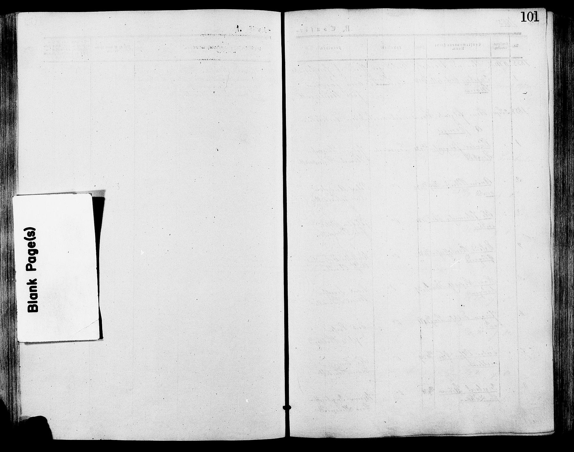 SAH, Lesja prestekontor, Ministerialbok nr. 9, 1854-1889, s. 101