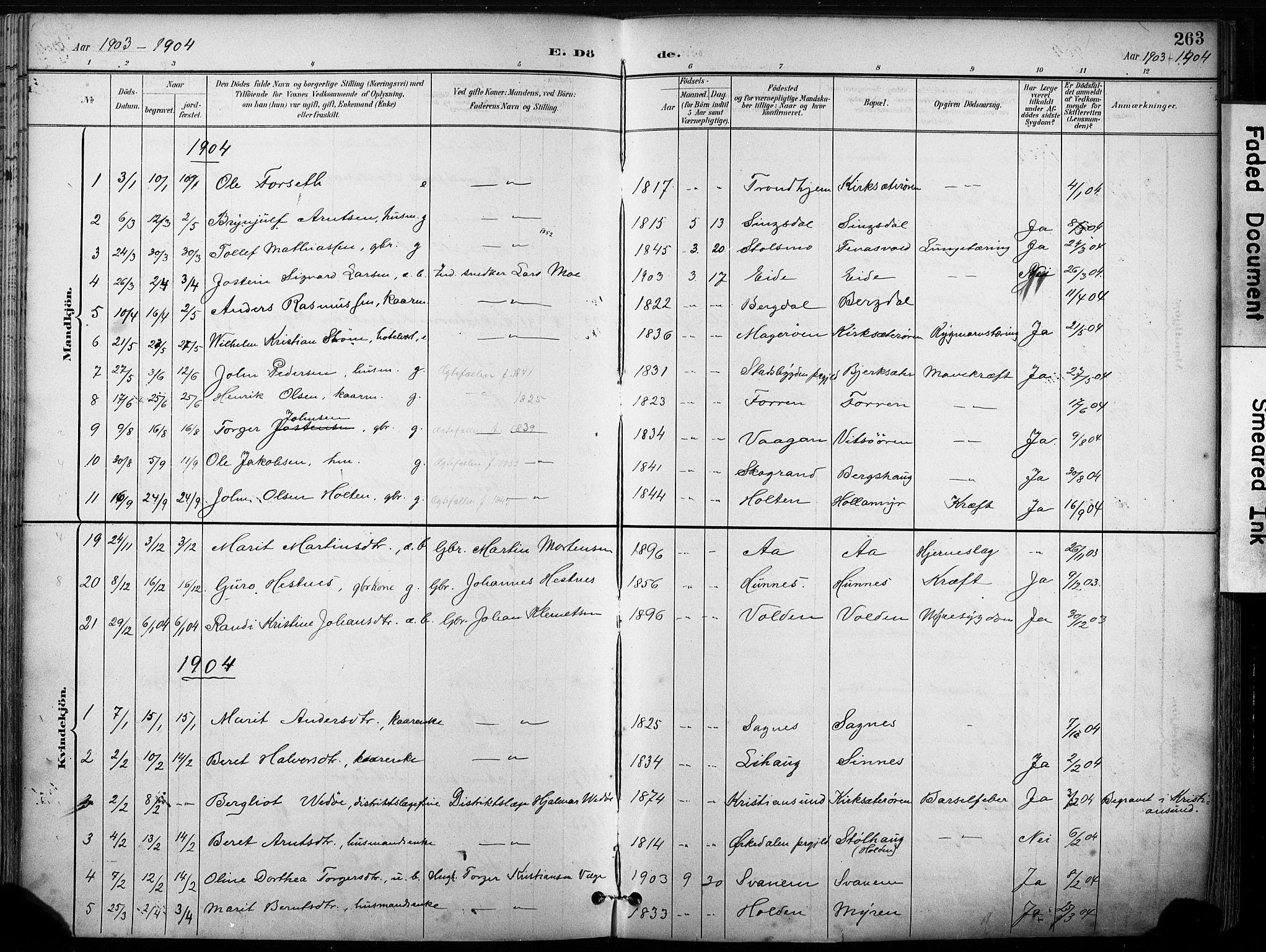 SAT, Ministerialprotokoller, klokkerbøker og fødselsregistre - Sør-Trøndelag, 630/L0497: Ministerialbok nr. 630A10, 1896-1910, s. 263