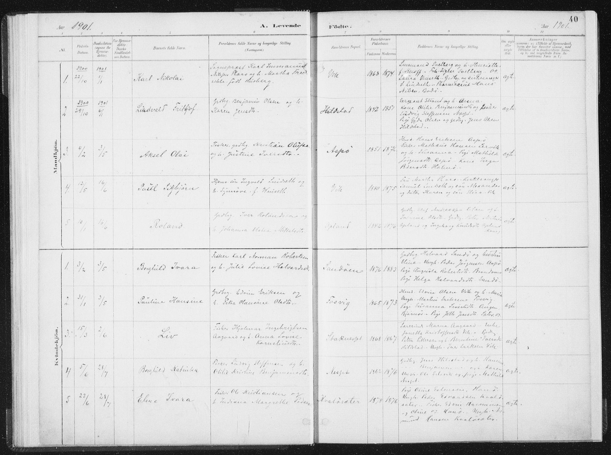 SAT, Ministerialprotokoller, klokkerbøker og fødselsregistre - Nord-Trøndelag, 771/L0597: Ministerialbok nr. 771A04, 1885-1910, s. 40