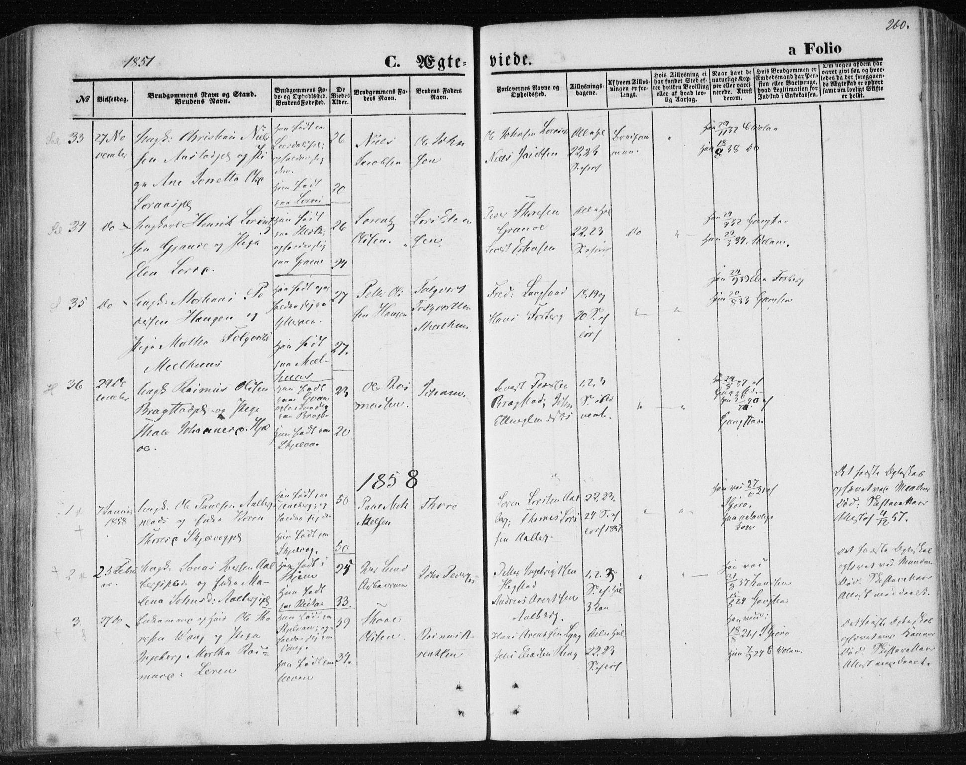 SAT, Ministerialprotokoller, klokkerbøker og fødselsregistre - Nord-Trøndelag, 730/L0283: Ministerialbok nr. 730A08, 1855-1865, s. 260
