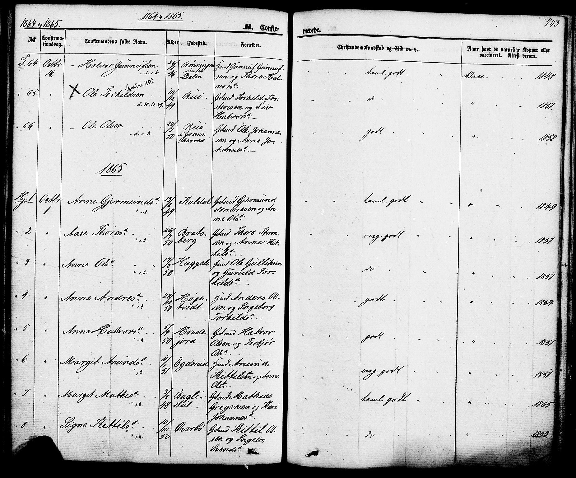 SAKO, Hjartdal kirkebøker, F/Fa/L0009: Ministerialbok nr. I 9, 1860-1879, s. 203