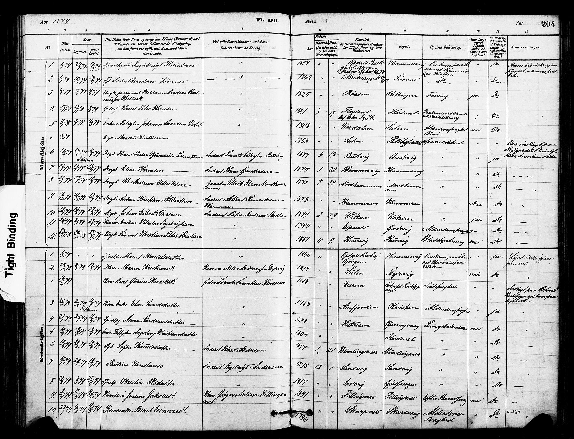 SAT, Ministerialprotokoller, klokkerbøker og fødselsregistre - Sør-Trøndelag, 640/L0578: Ministerialbok nr. 640A03, 1879-1889, s. 204