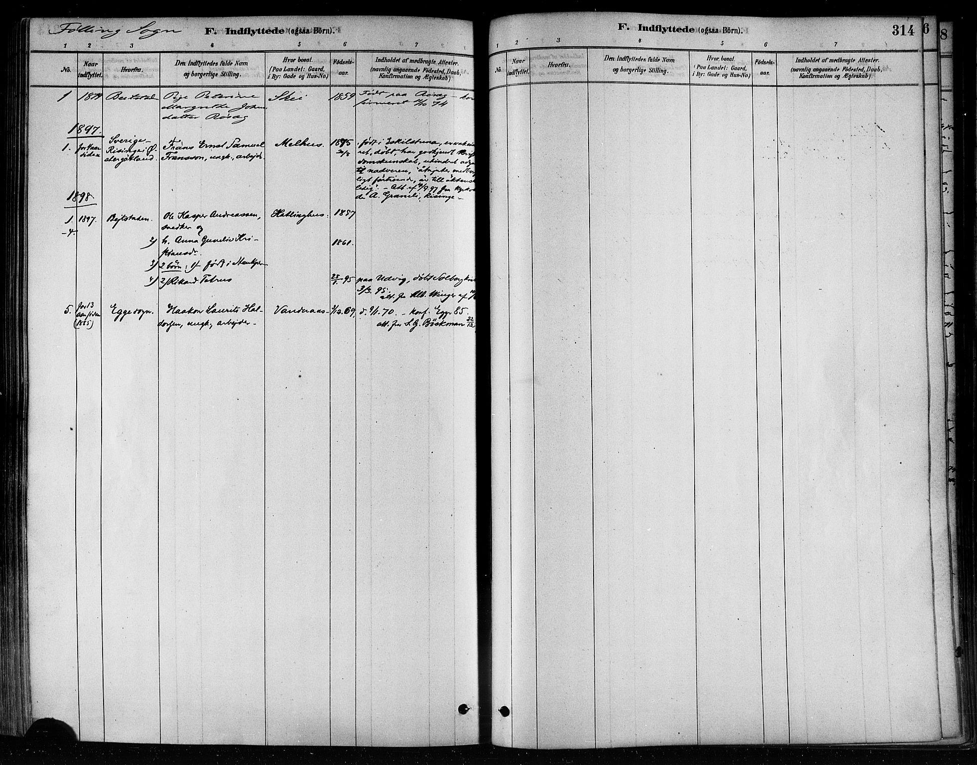 SAT, Ministerialprotokoller, klokkerbøker og fødselsregistre - Nord-Trøndelag, 746/L0449: Ministerialbok nr. 746A07 /3, 1878-1899, s. 314