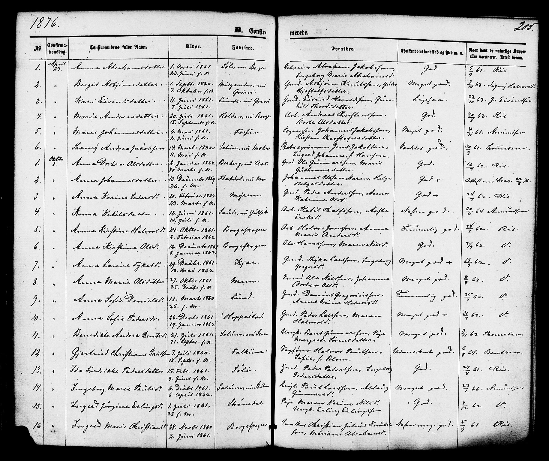 SAKO, Gjerpen kirkebøker, F/Fa/L0009: Ministerialbok nr. 9, 1872-1885, s. 205
