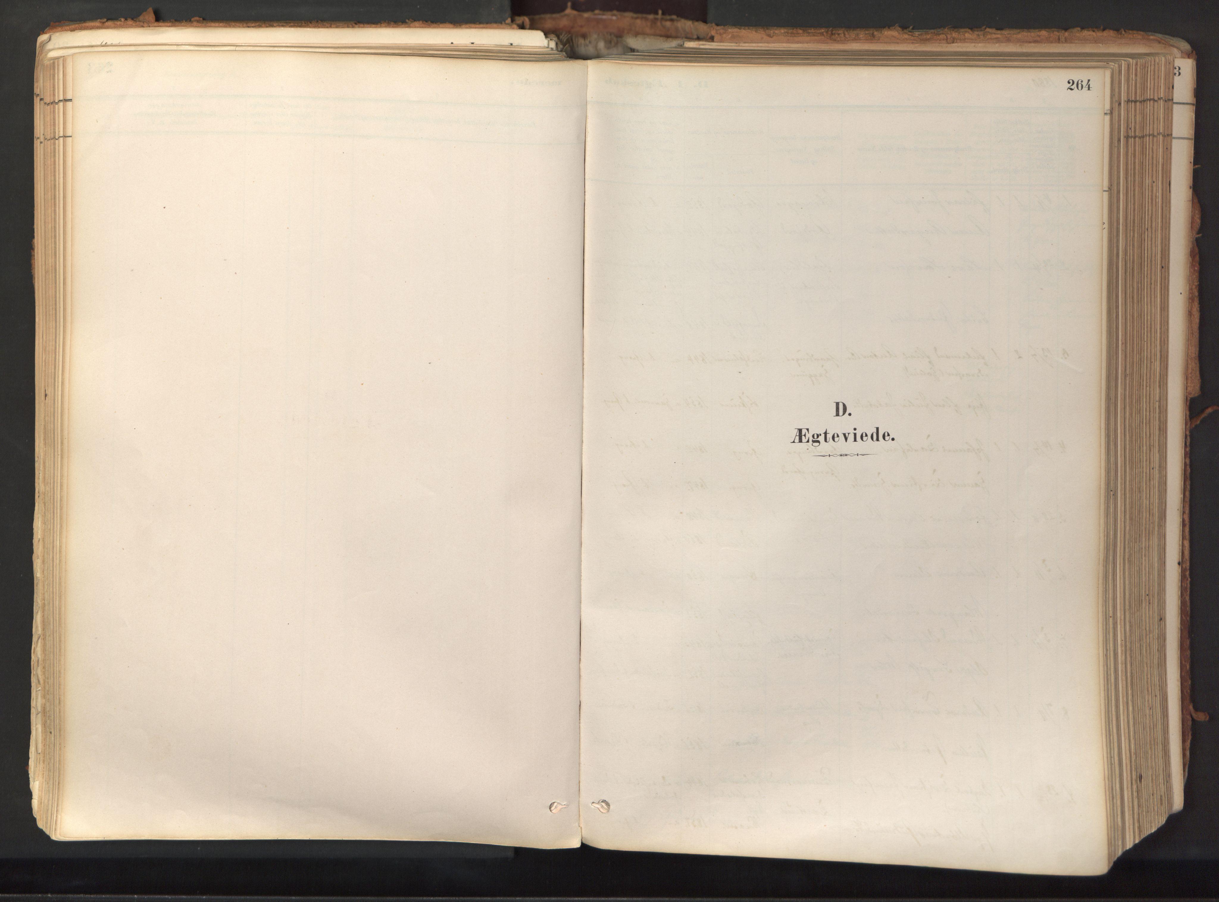 SAT, Ministerialprotokoller, klokkerbøker og fødselsregistre - Nord-Trøndelag, 758/L0519: Ministerialbok nr. 758A04, 1880-1926, s. 264