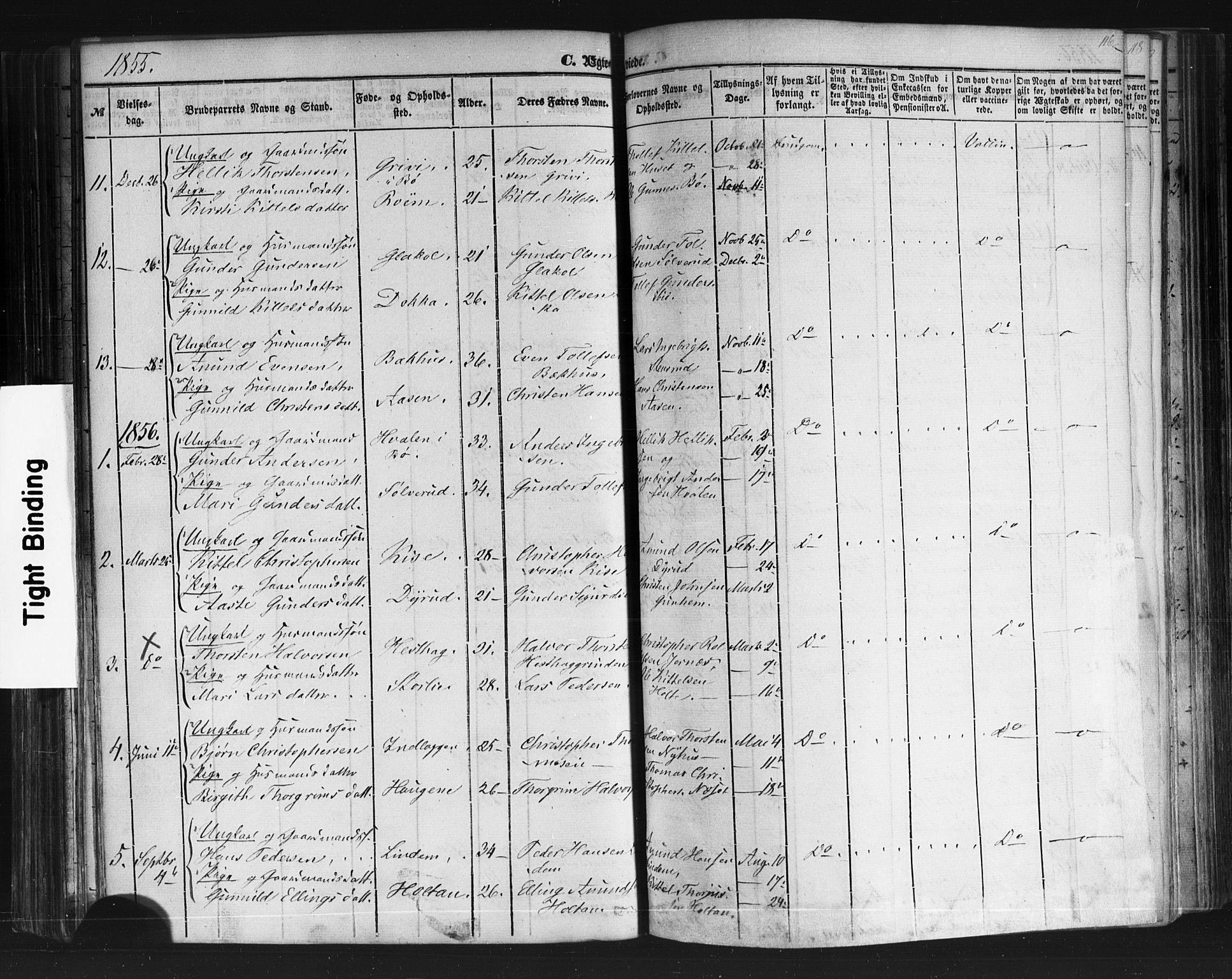 SAKO, Sauherad kirkebøker, F/Fb/L0001: Ministerialbok nr. II 1, 1851-1877, s. 116
