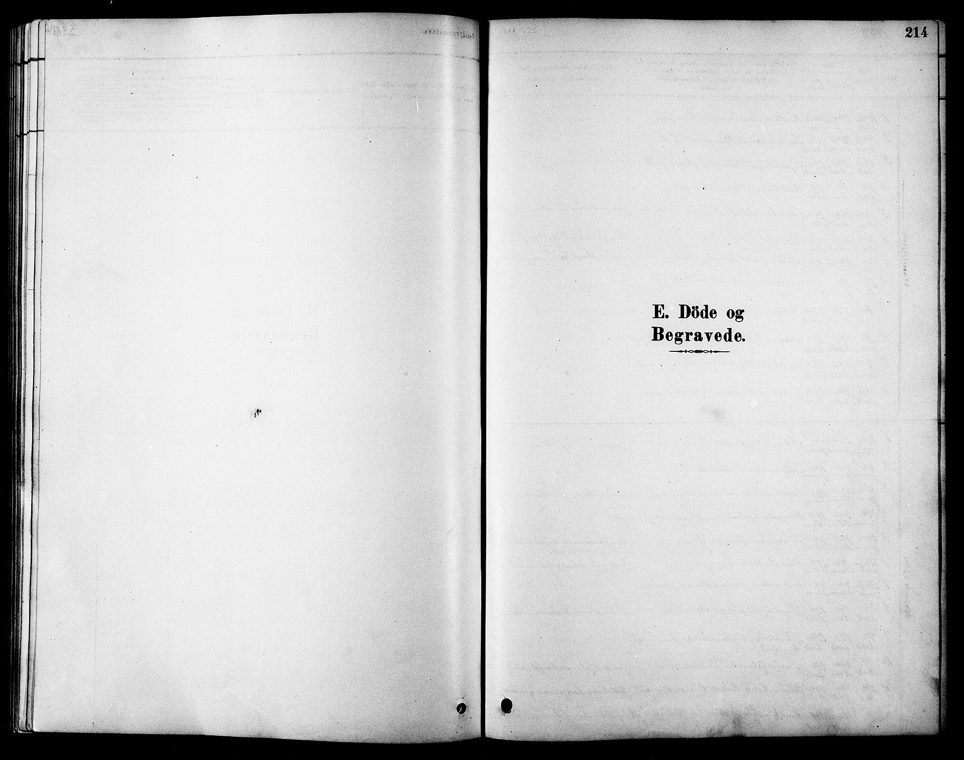 SAT, Ministerialprotokoller, klokkerbøker og fødselsregistre - Sør-Trøndelag, 616/L0423: Klokkerbok nr. 616C06, 1878-1903, s. 214