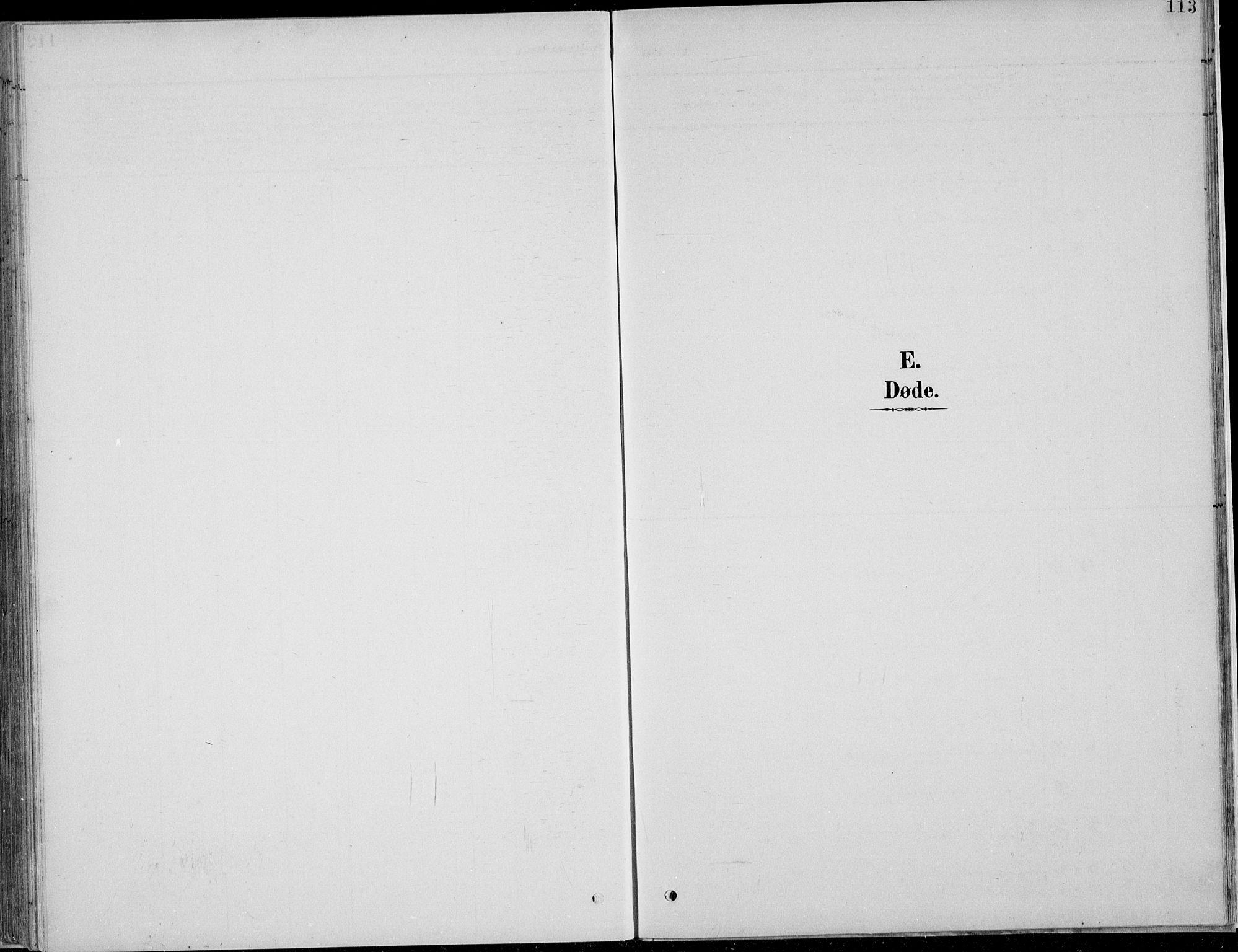 SAH, Nordre Land prestekontor, Klokkerbok nr. 13, 1891-1904, s. 113