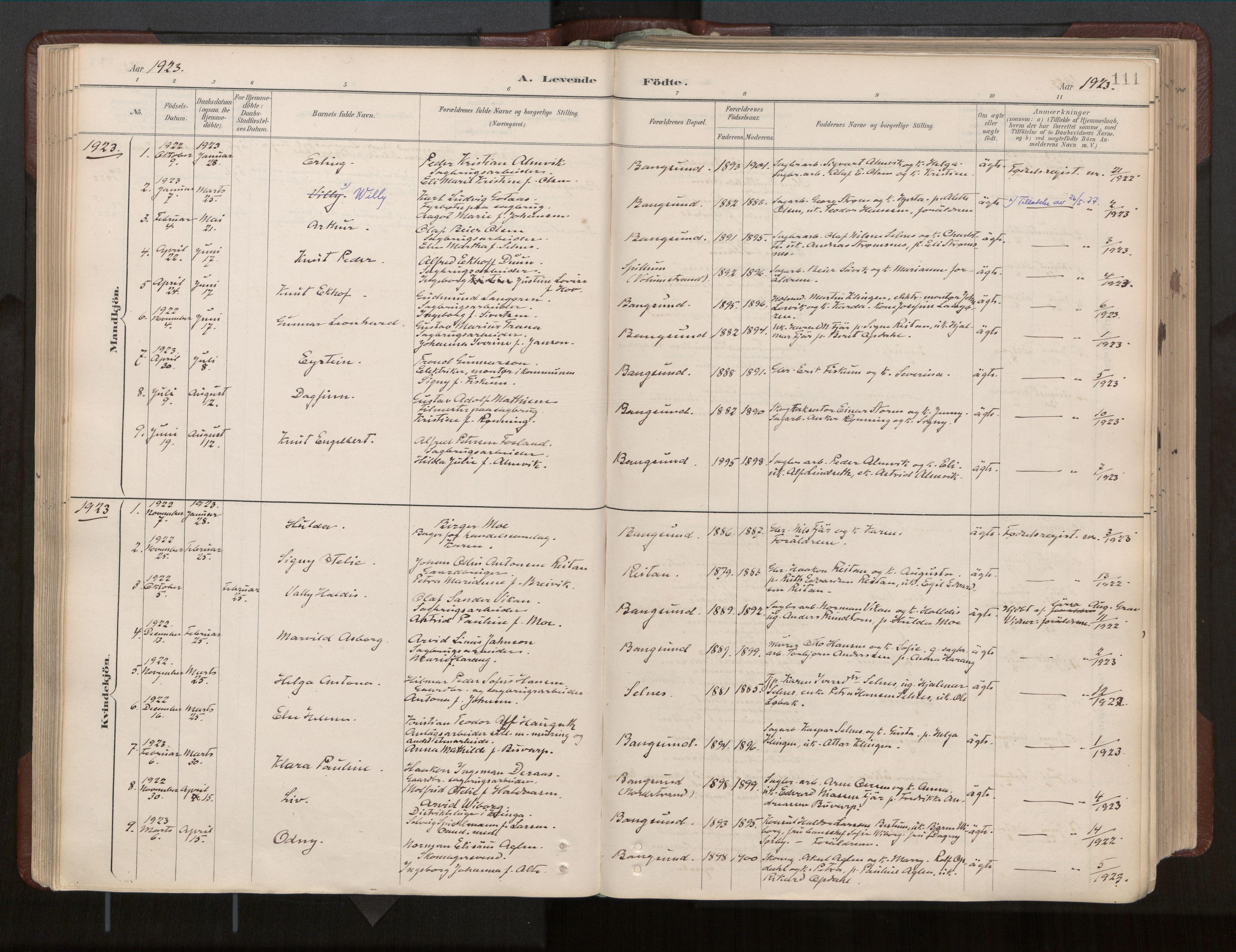 SAT, Ministerialprotokoller, klokkerbøker og fødselsregistre - Nord-Trøndelag, 770/L0589: Ministerialbok nr. 770A03, 1887-1929, s. 111
