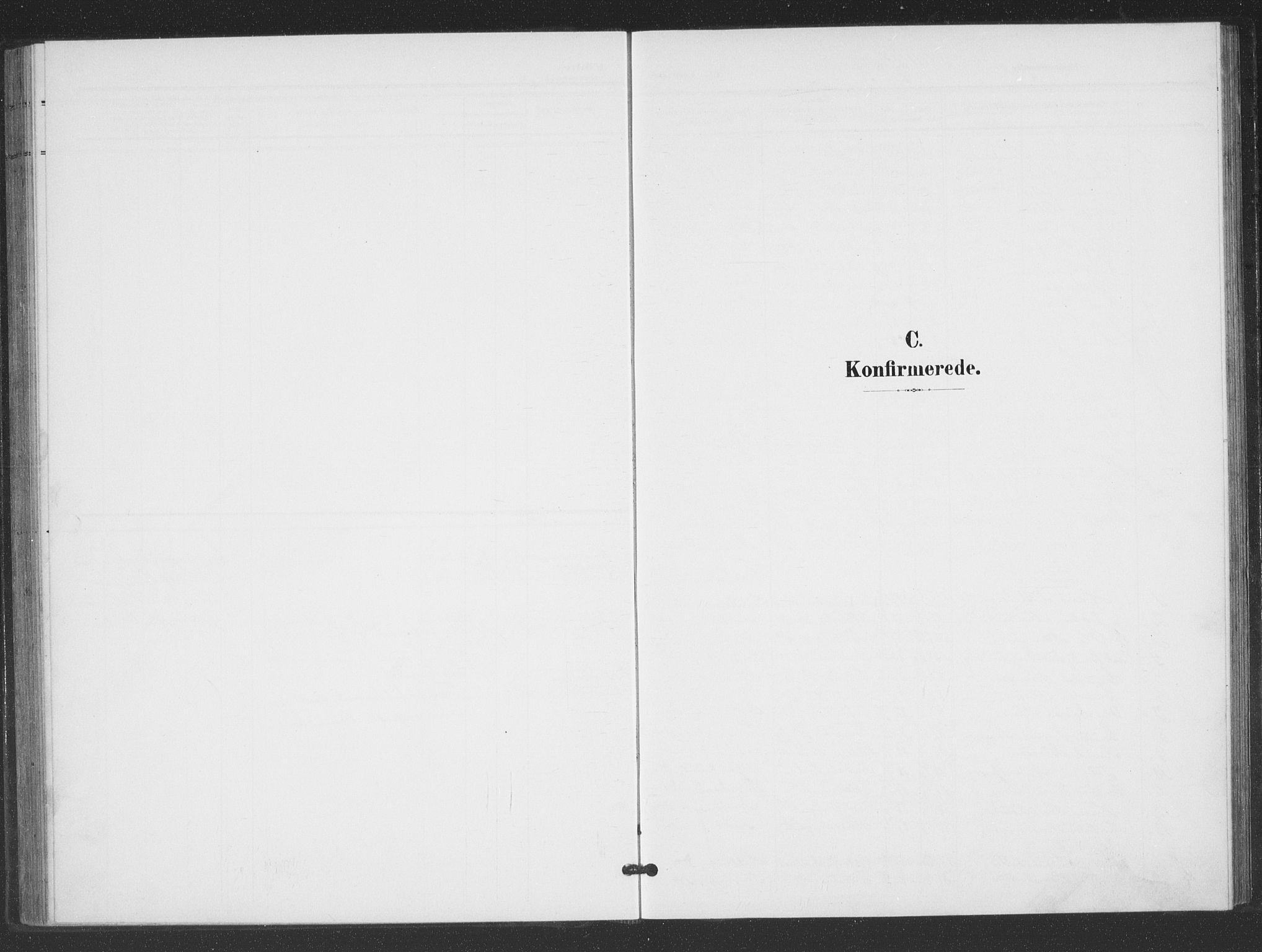 SAK, Evje sokneprestkontor, F/Fb/Fbc/L0005: Klokkerbok nr. B 5, 1901-1935