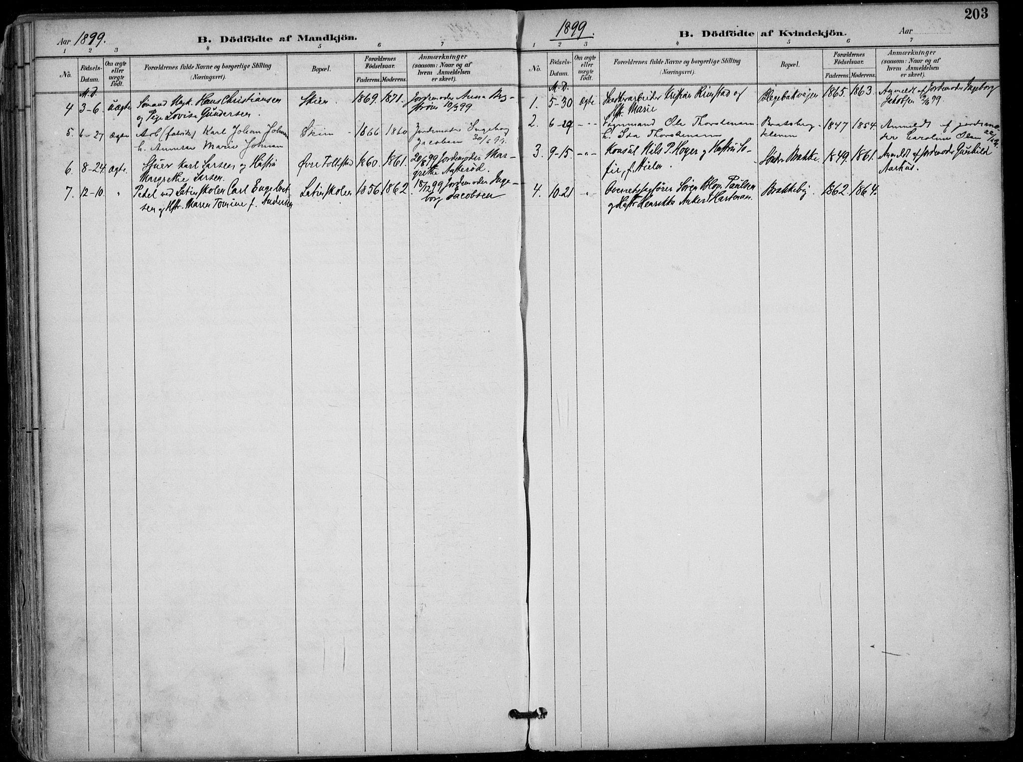 SAKO, Skien kirkebøker, F/Fa/L0010: Ministerialbok nr. 10, 1891-1899, s. 203