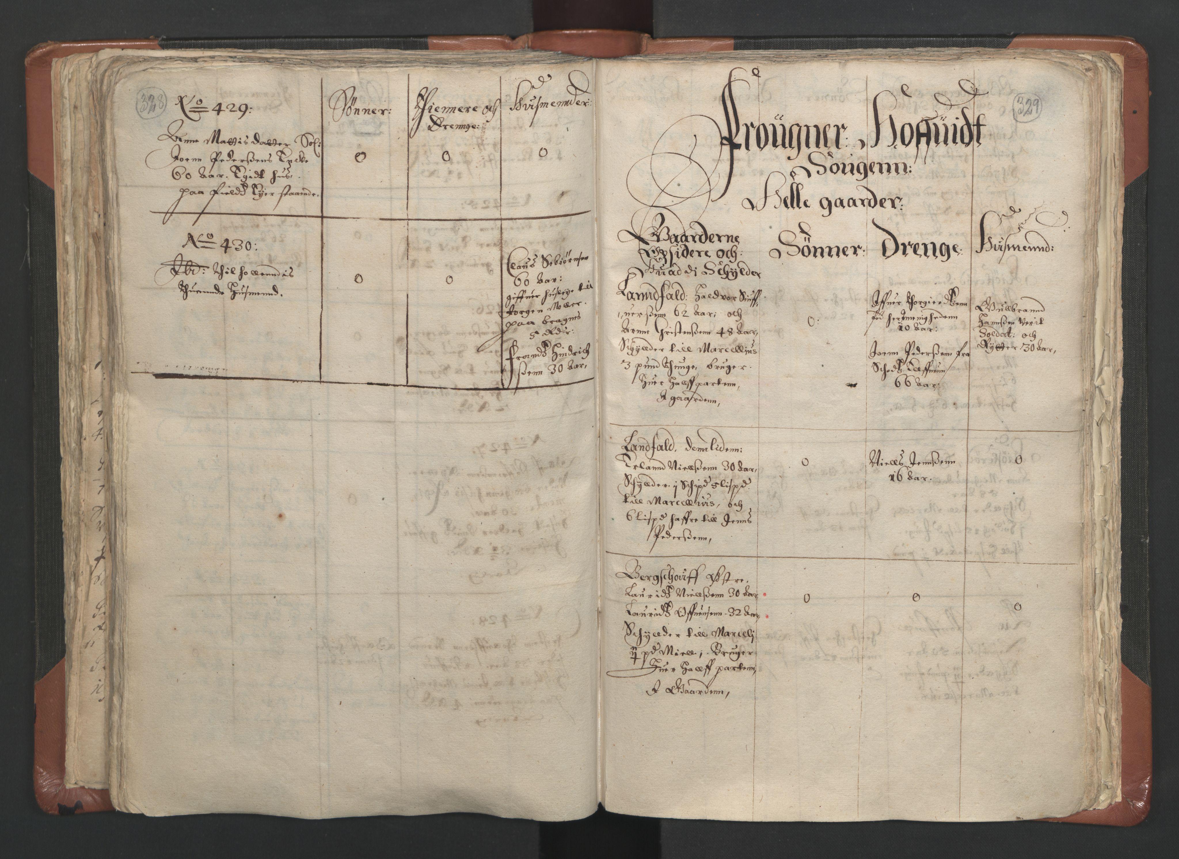 RA, Sogneprestenes manntall 1664-1666, nr. 9: Bragernes prosti, 1664-1666, s. 328-329