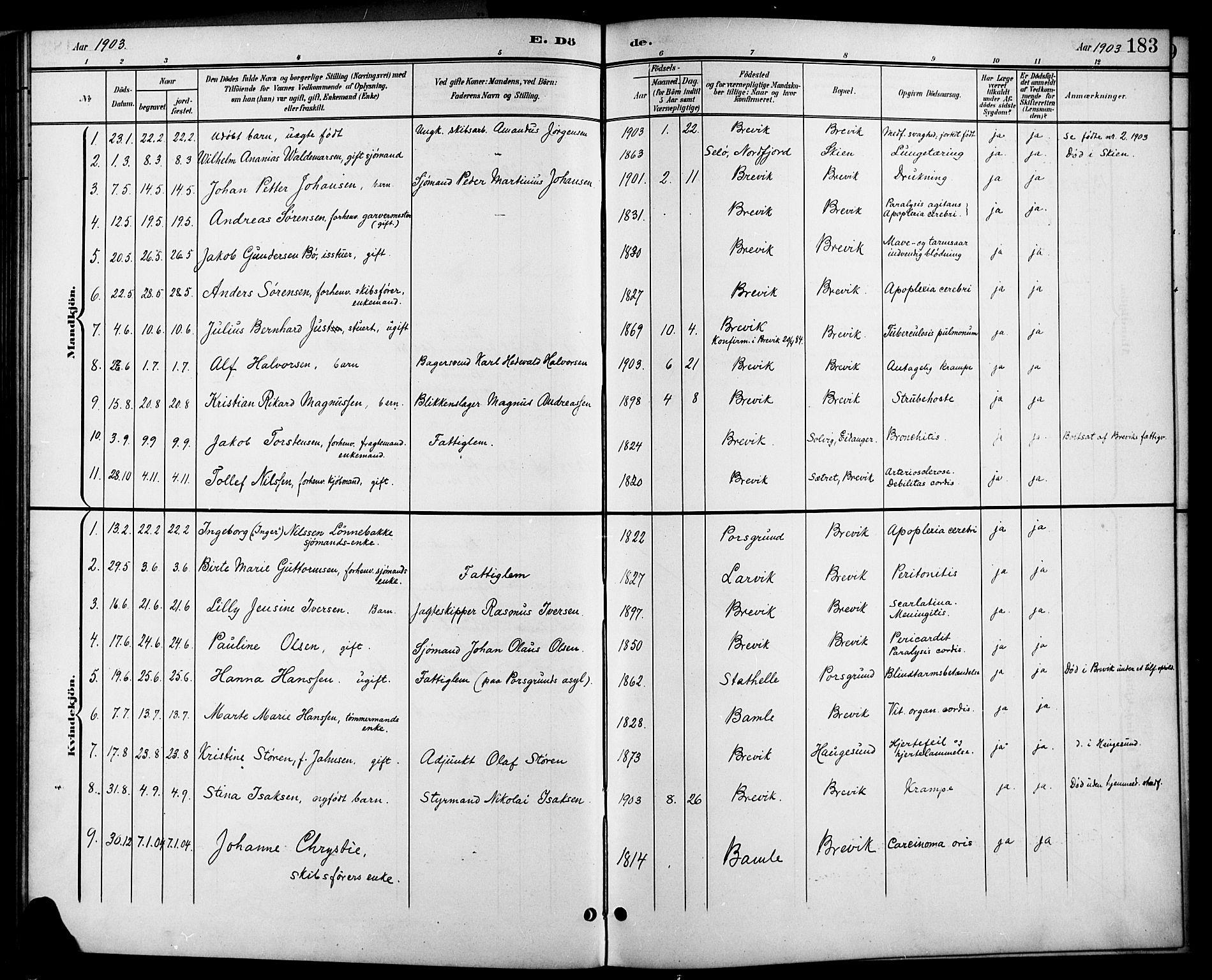 SAKO, Brevik kirkebøker, G/Ga/L0005: Klokkerbok nr. 5, 1901-1924, s. 183