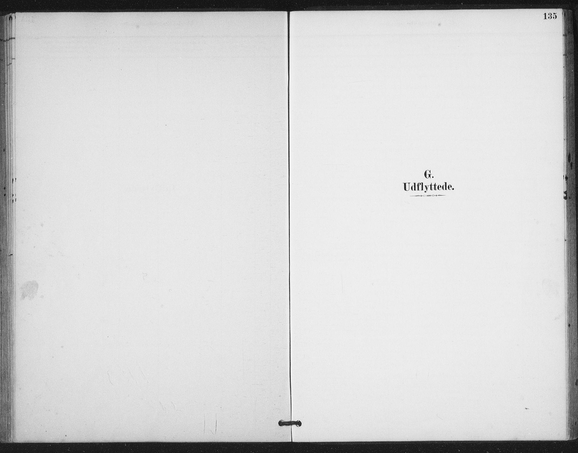 SAT, Ministerialprotokoller, klokkerbøker og fødselsregistre - Nord-Trøndelag, 783/L0660: Ministerialbok nr. 783A02, 1886-1918, s. 135