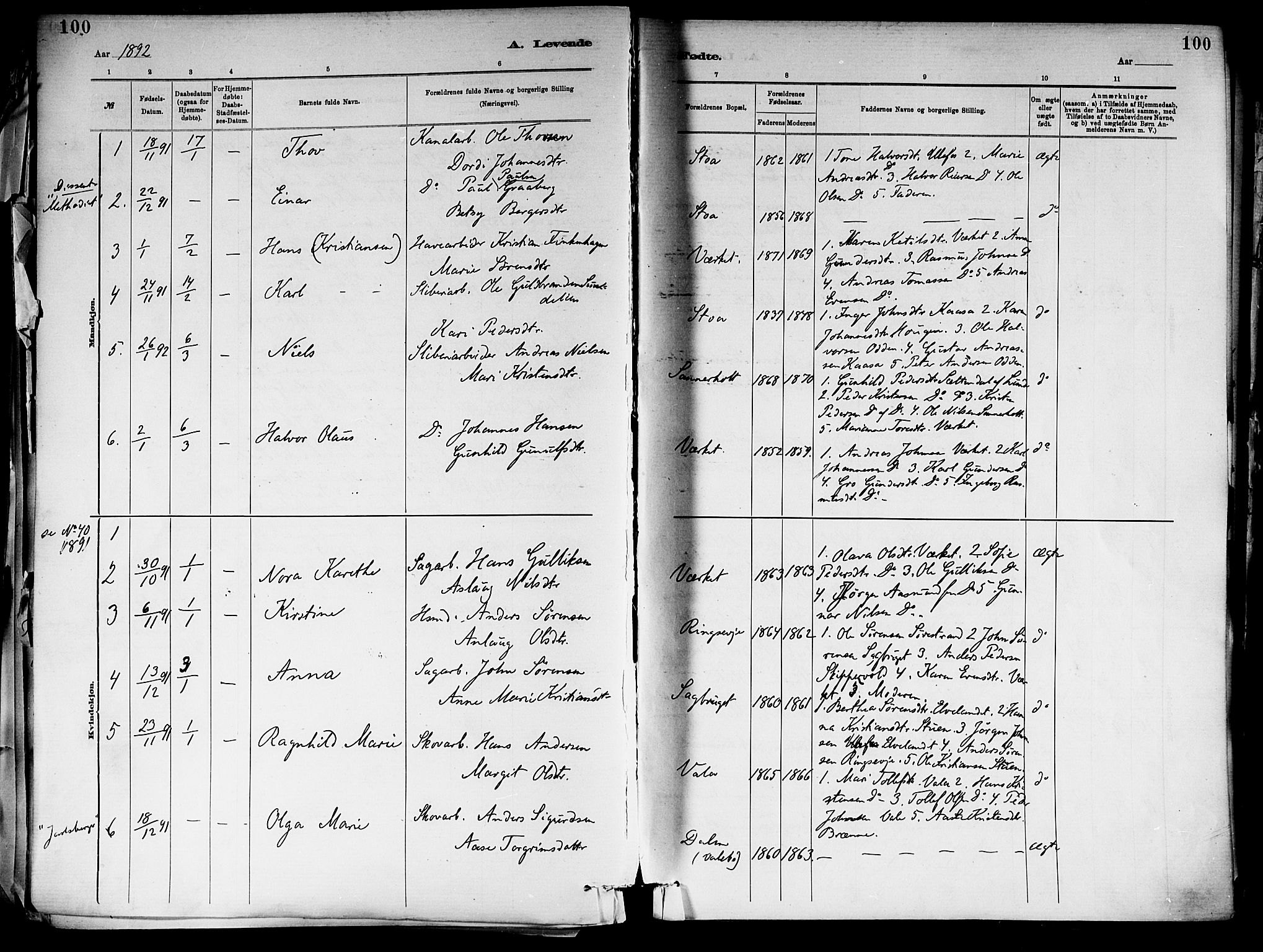 SAKO, Holla kirkebøker, F/Fa/L0008: Ministerialbok nr. 8, 1882-1897, s. 100