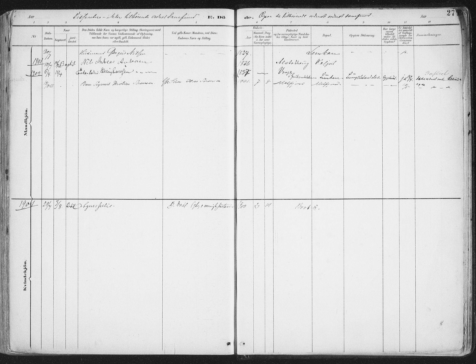 SAT, Ministerialprotokoller, klokkerbøker og fødselsregistre - Nordland, 888/L1246: Ministerialbok nr. 888A12, 1891-1903, s. 272