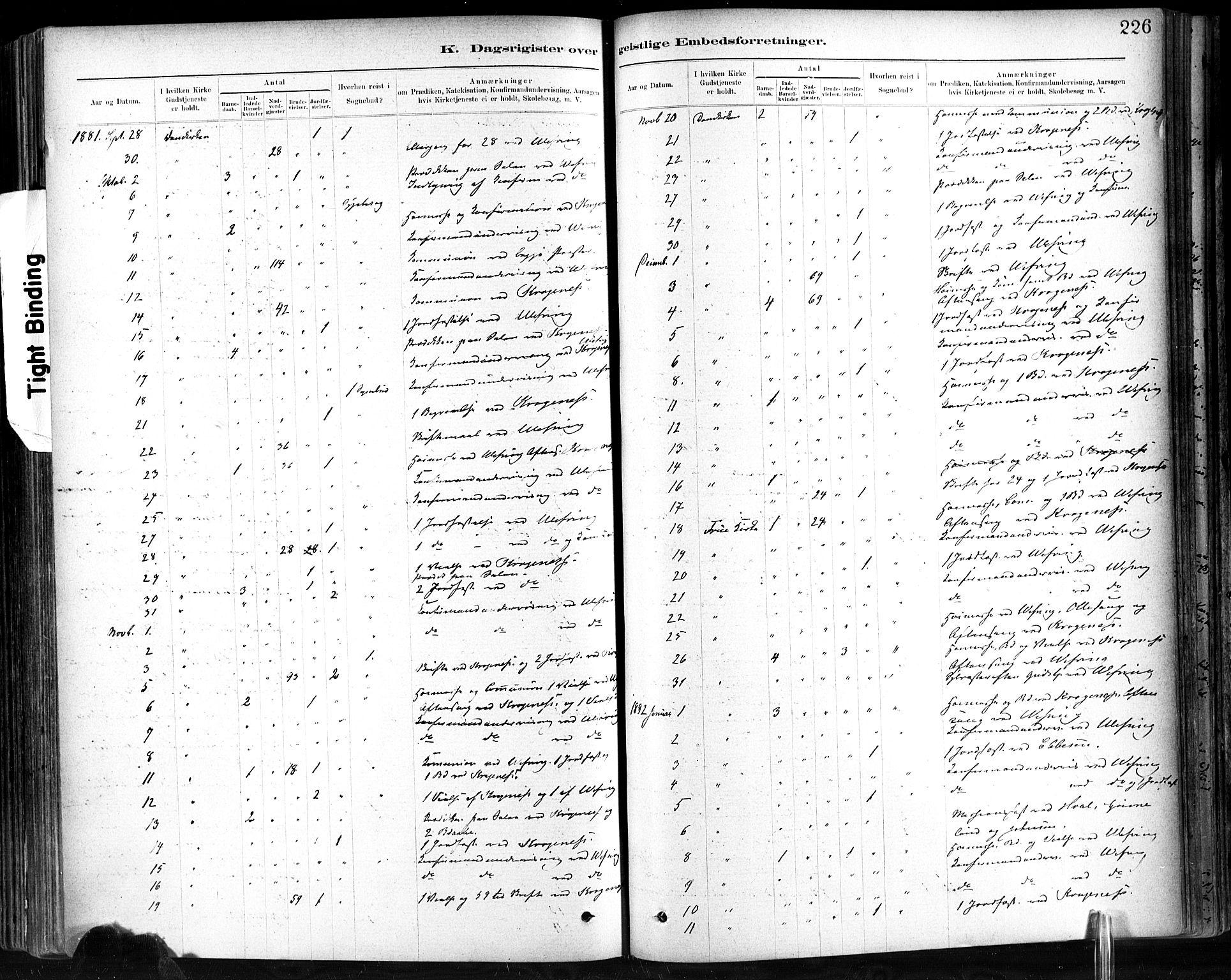 SAT, Ministerialprotokoller, klokkerbøker og fødselsregistre - Sør-Trøndelag, 602/L0120: Ministerialbok nr. 602A18, 1880-1913, s. 226