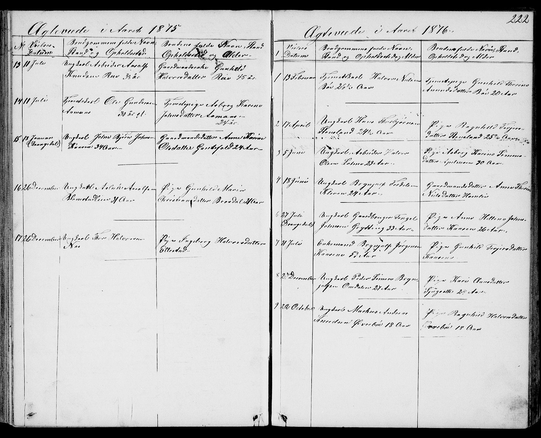 SAKO, Drangedal kirkebøker, G/Gb/L0001: Klokkerbok nr. II 1, 1856-1894, s. 222