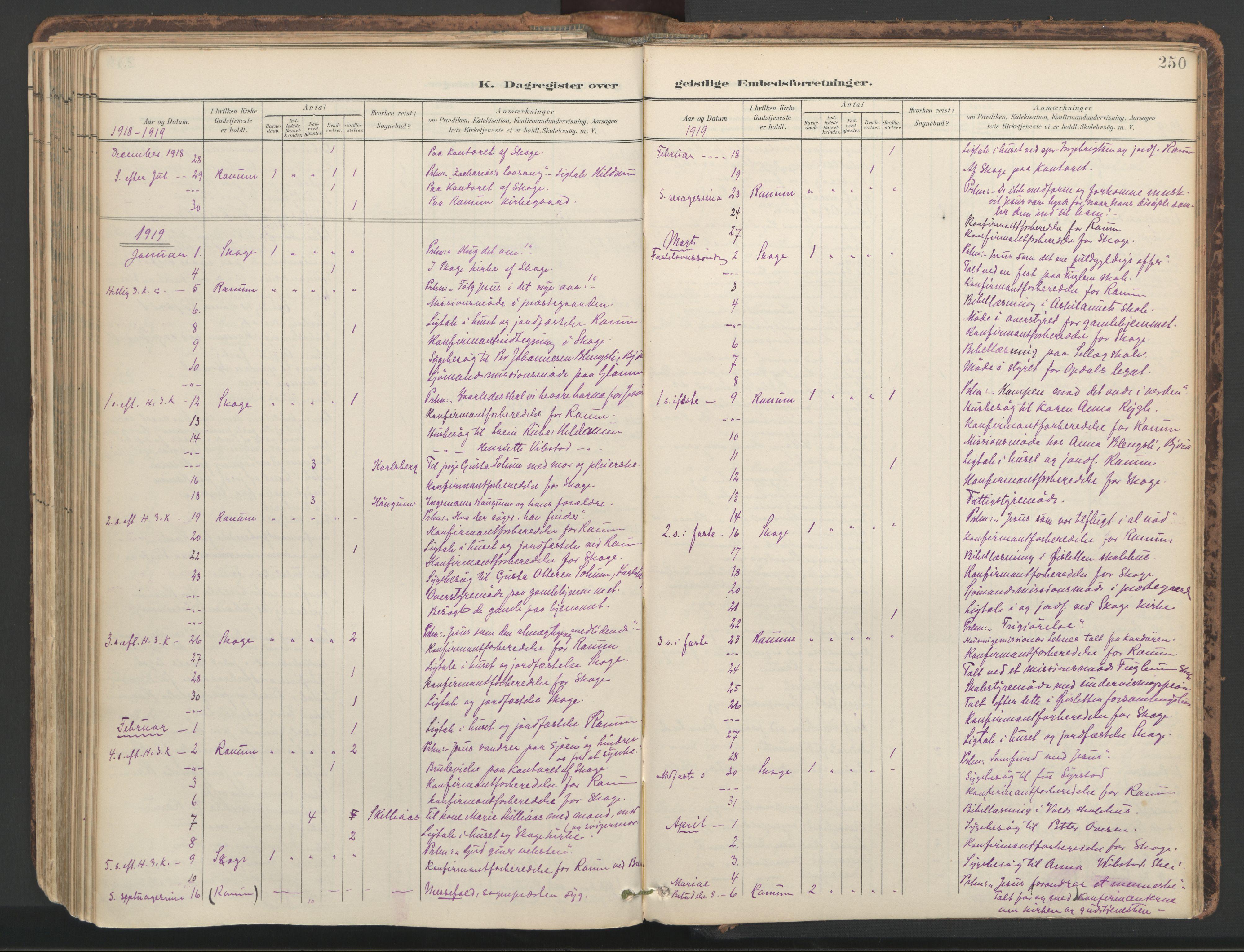 SAT, Ministerialprotokoller, klokkerbøker og fødselsregistre - Nord-Trøndelag, 764/L0556: Ministerialbok nr. 764A11, 1897-1924, s. 250