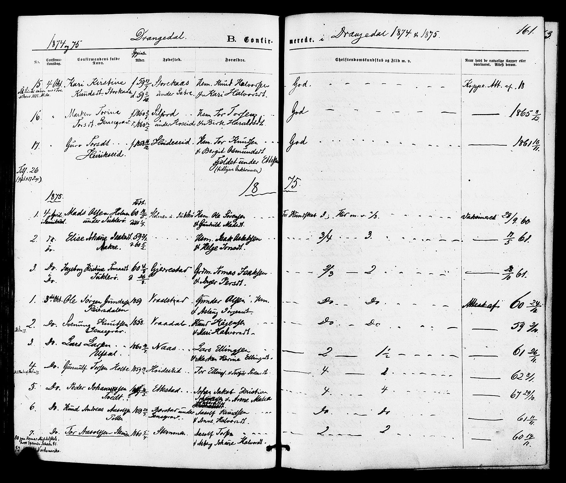 SAKO, Drangedal kirkebøker, F/Fa/L0009: Ministerialbok nr. 9 /1, 1872-1884, s. 161