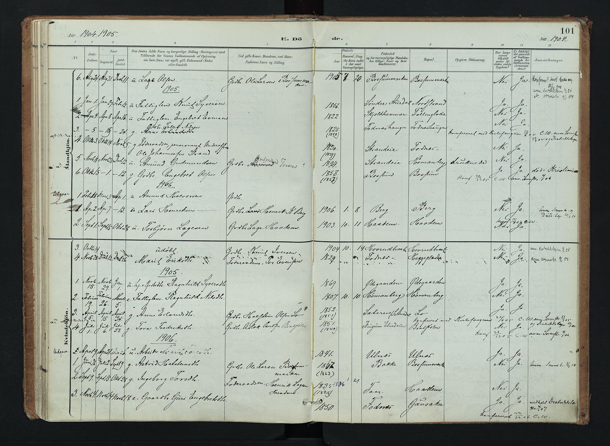 SAH, Nord-Aurdal prestekontor, Ministerialbok nr. 16, 1897-1925, s. 101