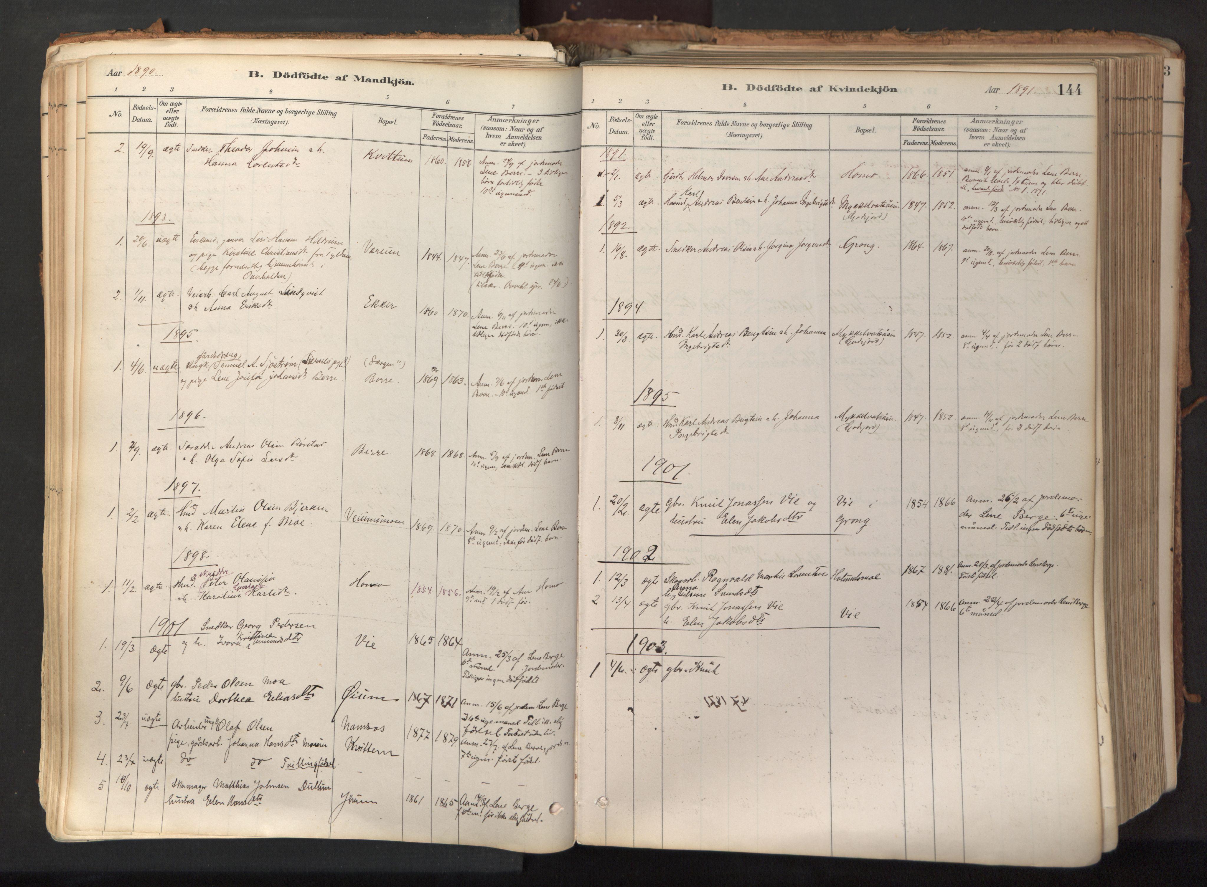 SAT, Ministerialprotokoller, klokkerbøker og fødselsregistre - Nord-Trøndelag, 758/L0519: Ministerialbok nr. 758A04, 1880-1926, s. 144