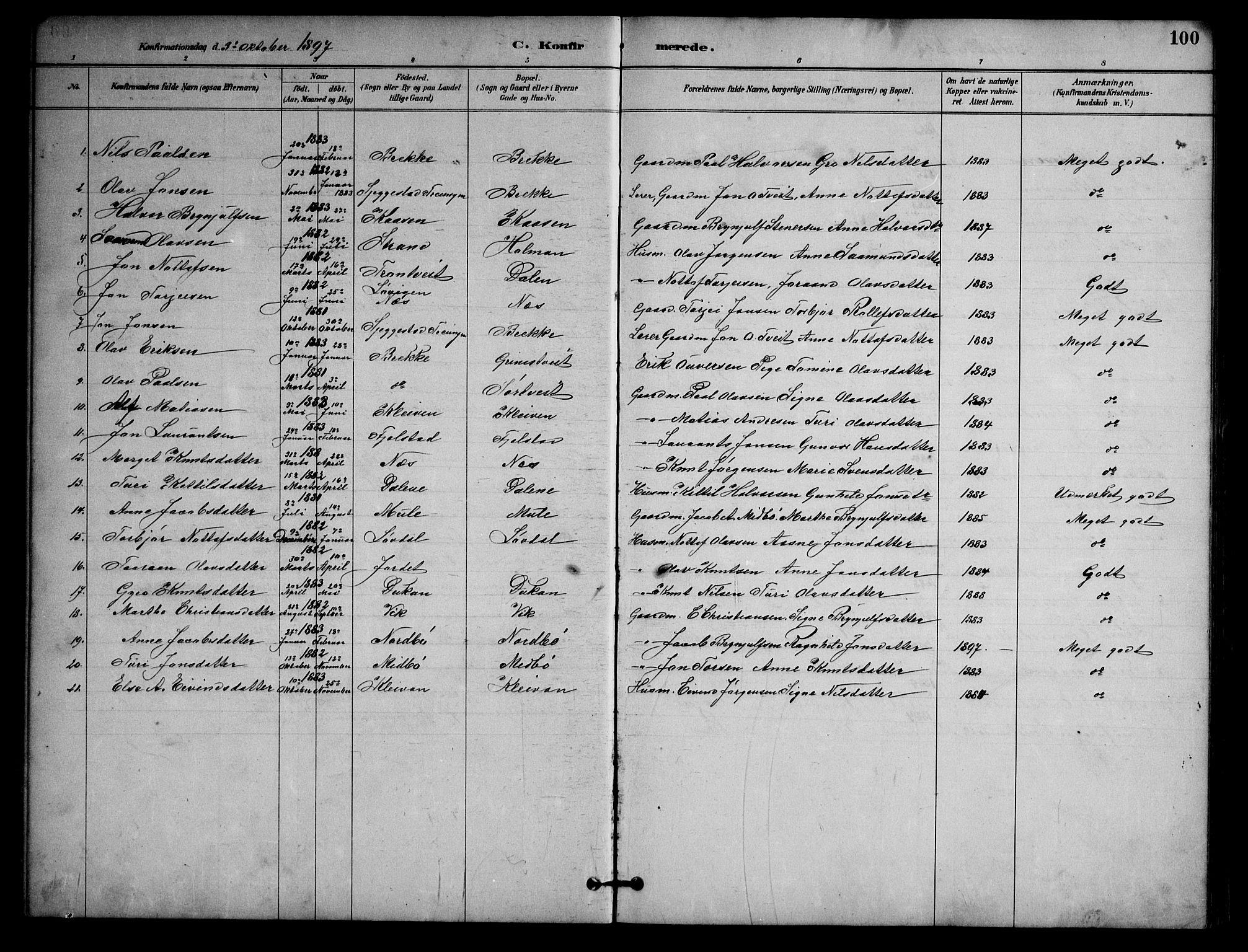 SAKO, Nissedal kirkebøker, G/Ga/L0003: Klokkerbok nr. I 3, 1887-1911, s. 100