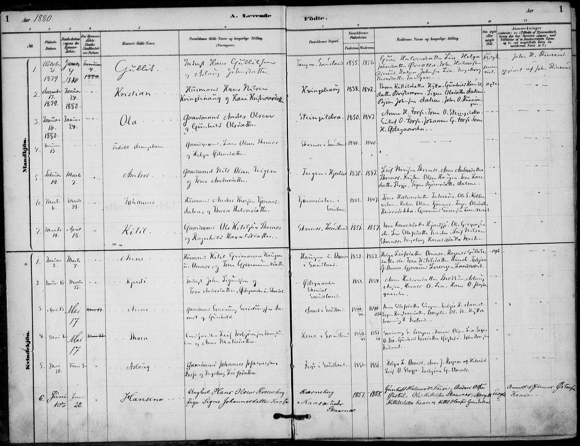 SAKO, Hjartdal kirkebøker, F/Fb/L0002: Ministerialbok nr. II 2, 1880-1932, s. 1