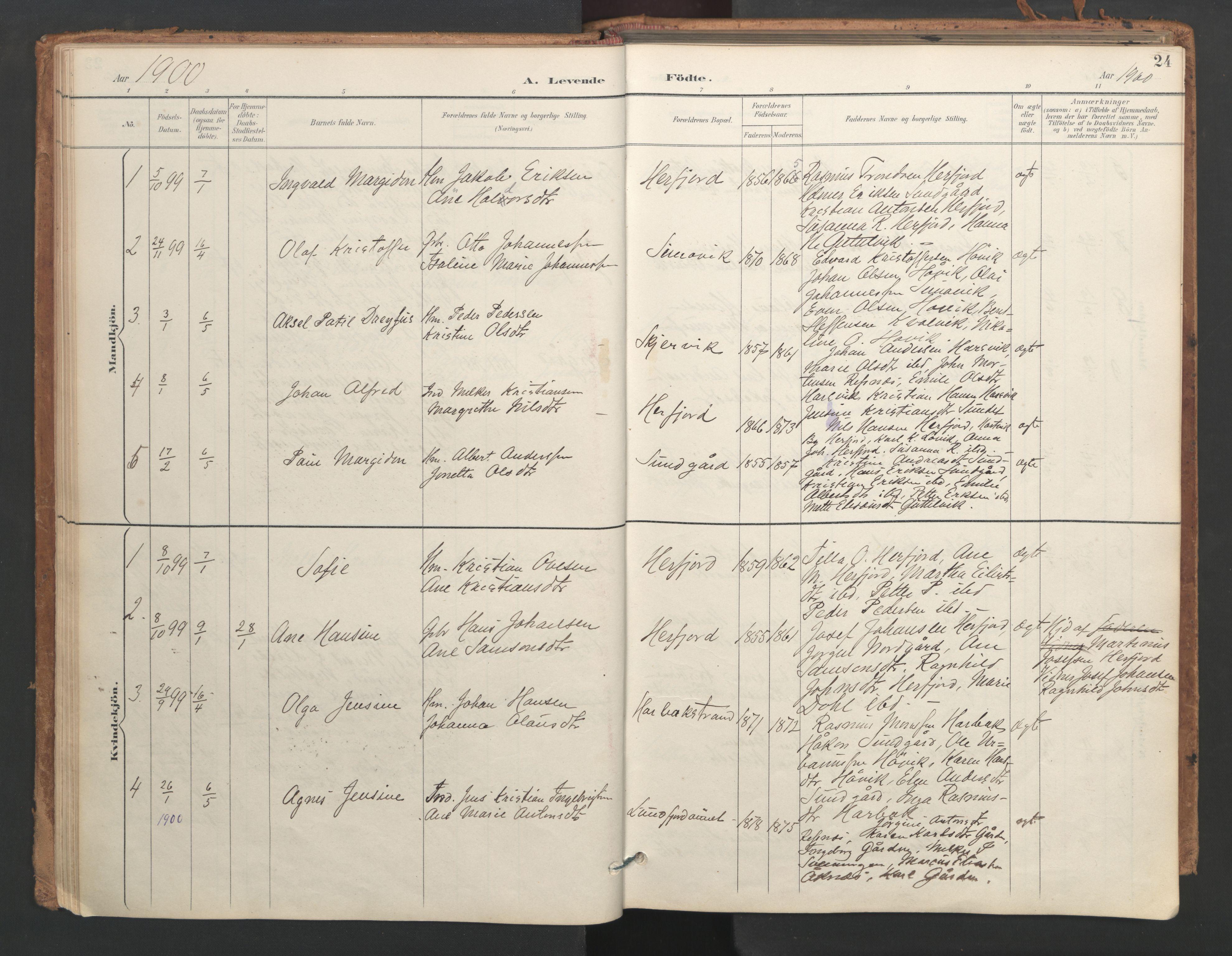 SAT, Ministerialprotokoller, klokkerbøker og fødselsregistre - Sør-Trøndelag, 656/L0693: Ministerialbok nr. 656A02, 1894-1913, s. 24