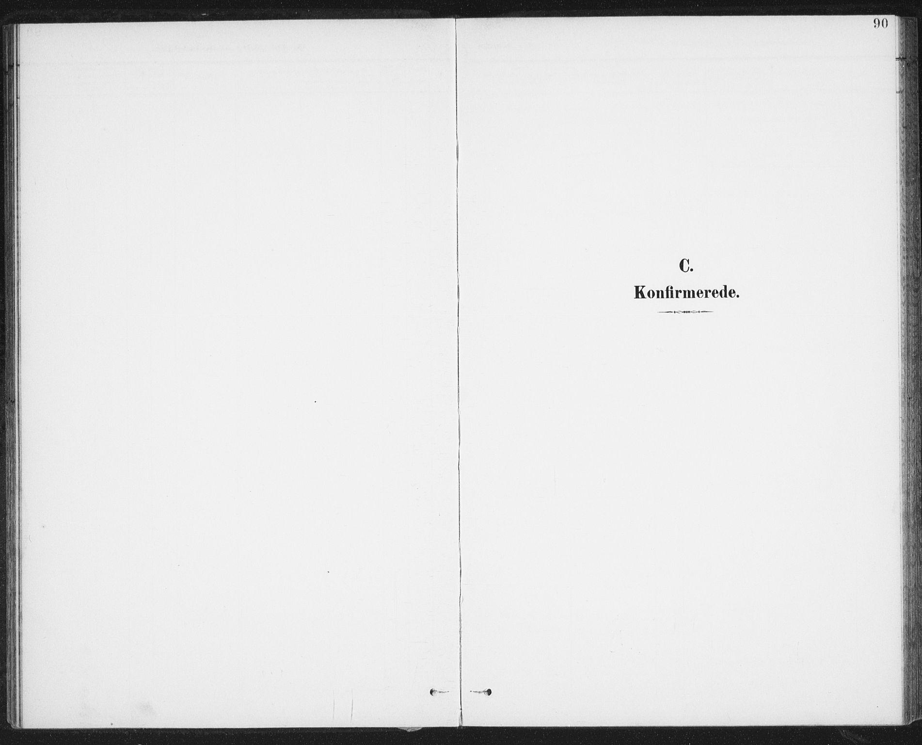 SAT, Ministerialprotokoller, klokkerbøker og fødselsregistre - Nordland, 899/L1437: Ministerialbok nr. 899A05, 1897-1908, s. 90