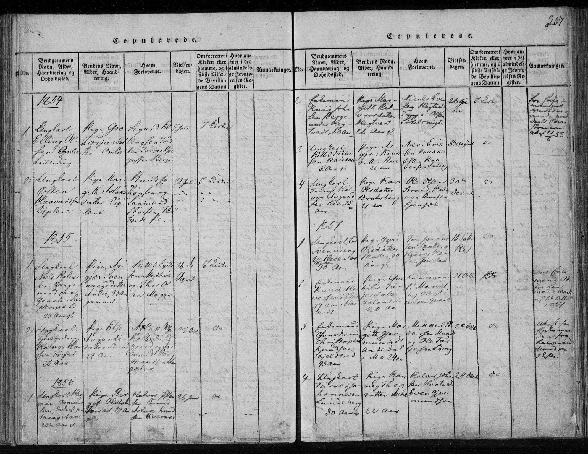 SAKO, Lårdal kirkebøker, F/Fa/L0005: Ministerialbok nr. I 5, 1815-1860, s. 207