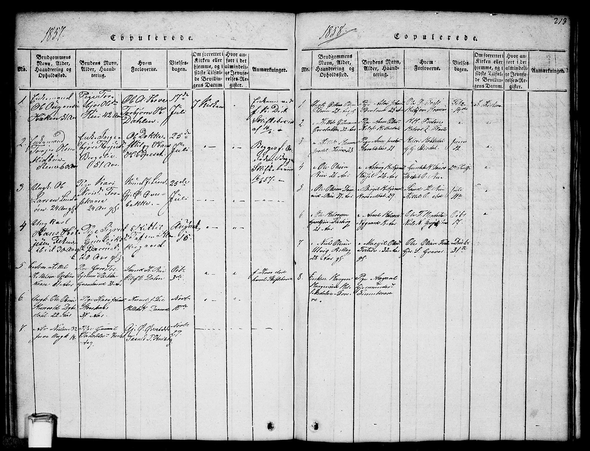 SAKO, Gransherad kirkebøker, G/Gb/L0001: Klokkerbok nr. II 1, 1815-1860, s. 213