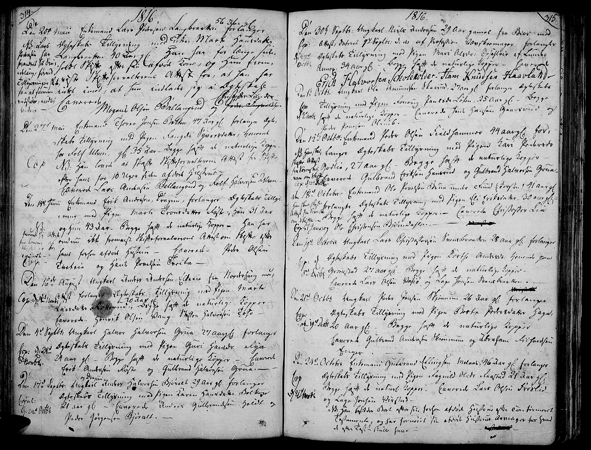 SAH, Jevnaker prestekontor, Ministerialbok nr. 4, 1800-1861, s. 314-315