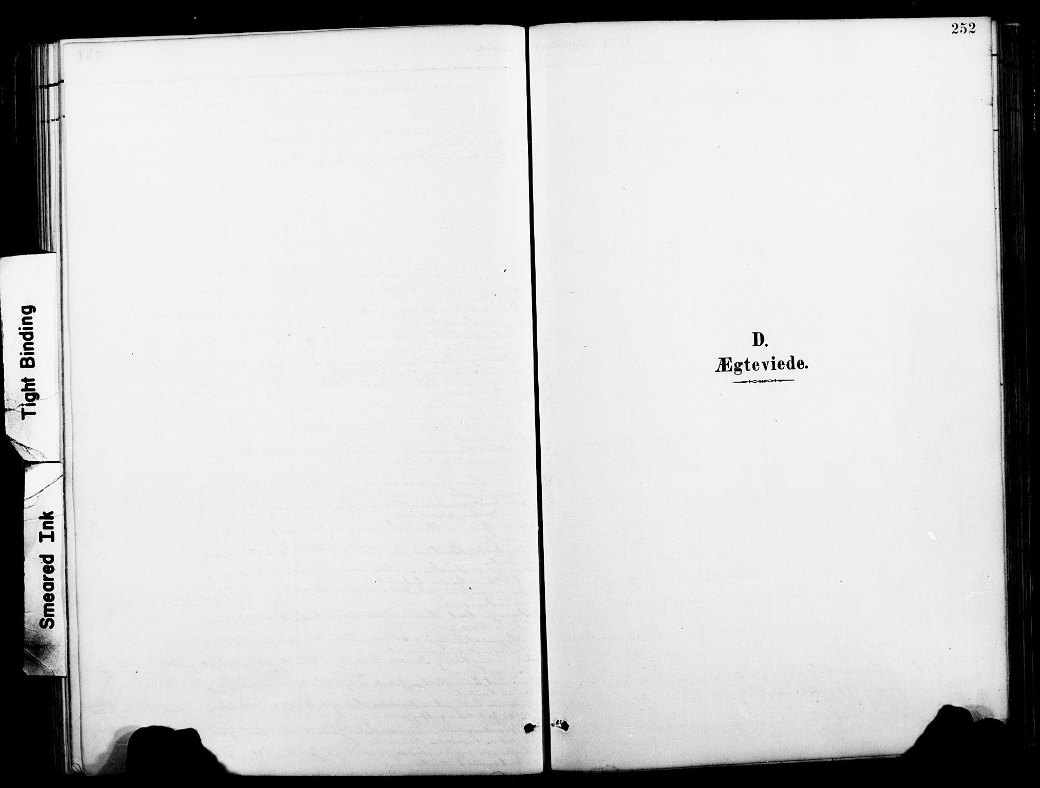 SAT, Ministerialprotokoller, klokkerbøker og fødselsregistre - Nordland, 827/L0421: Klokkerbok nr. 827C10, 1887-1906, s. 252