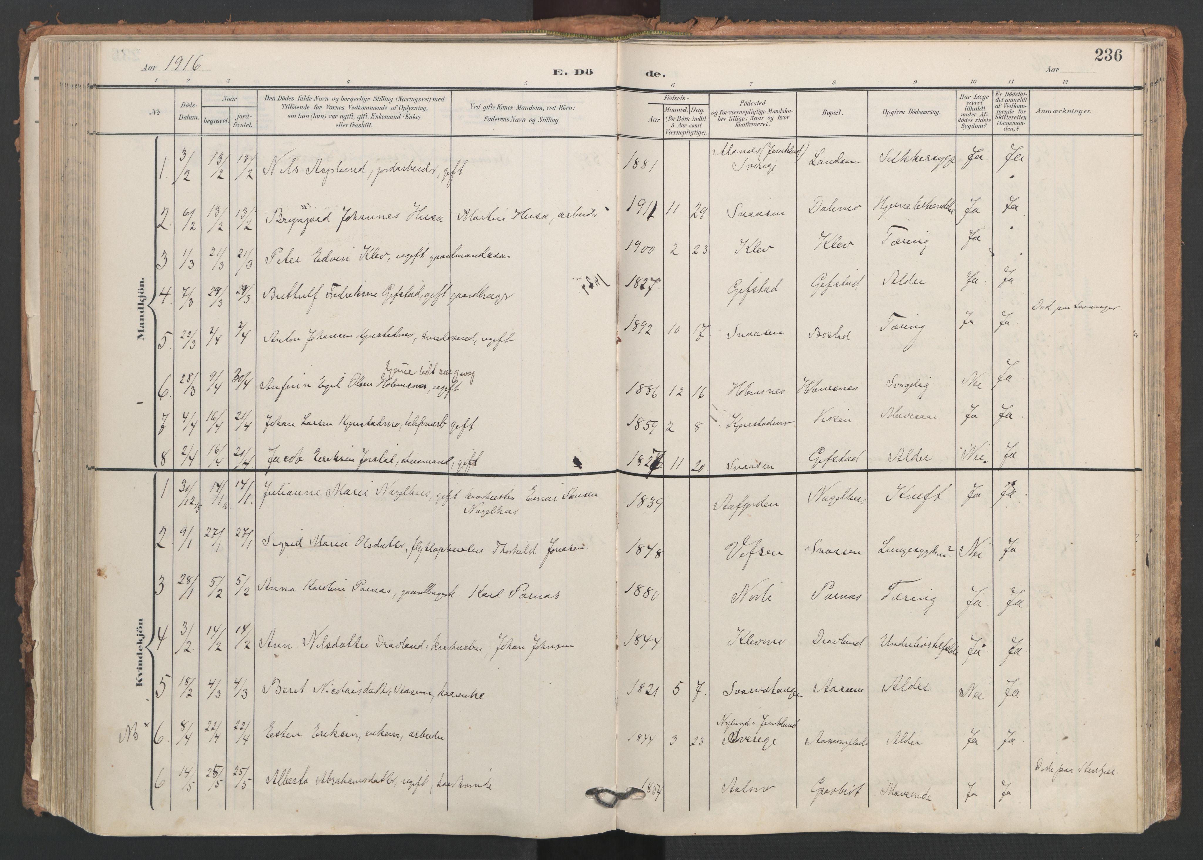 SAT, Ministerialprotokoller, klokkerbøker og fødselsregistre - Nord-Trøndelag, 749/L0477: Ministerialbok nr. 749A11, 1902-1927, s. 236