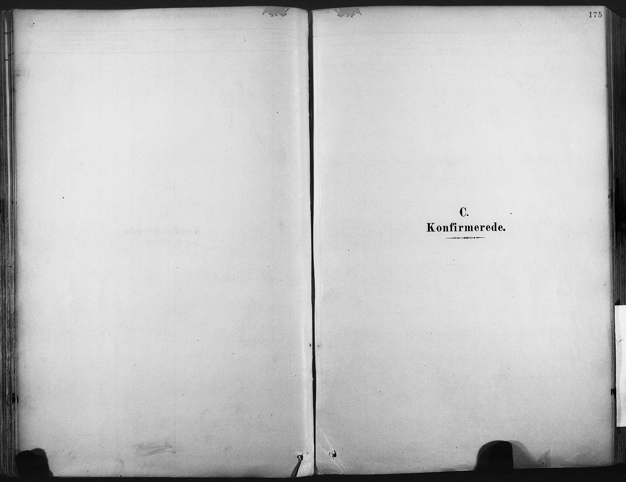 SAKO, Porsgrunn kirkebøker , F/Fa/L0008: Ministerialbok nr. 8, 1878-1895, s. 175